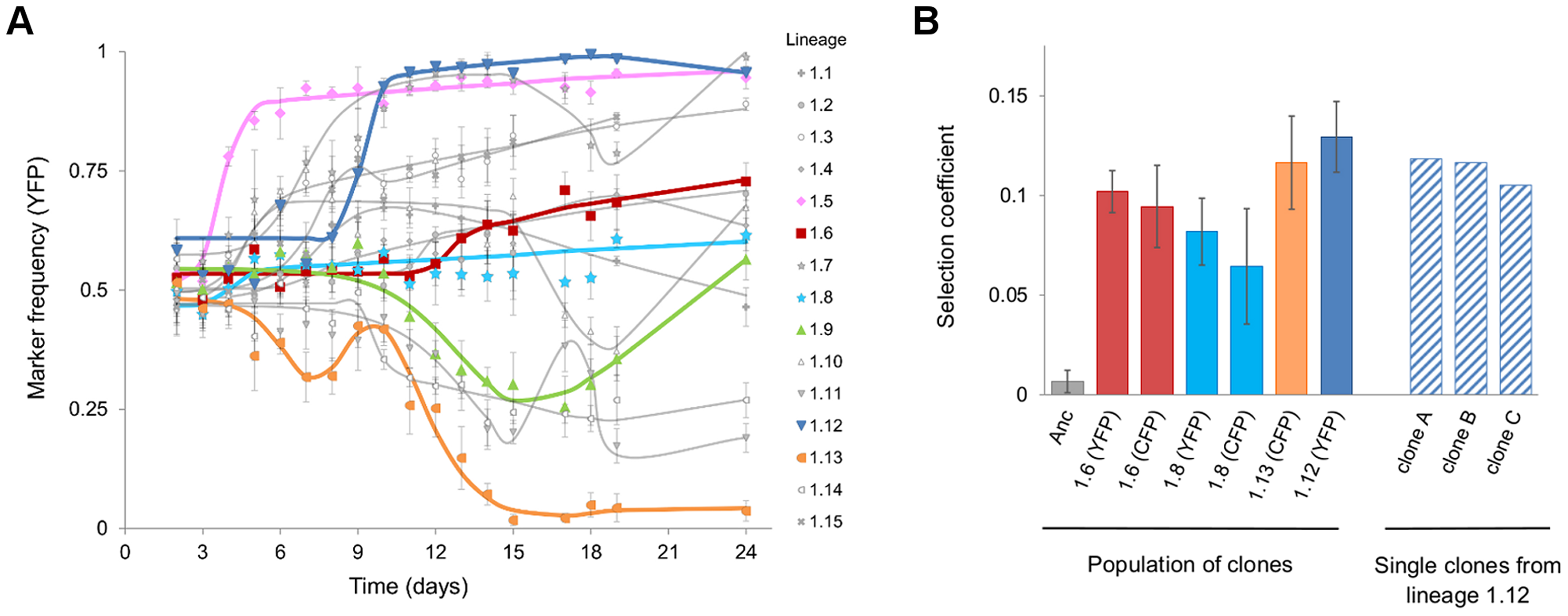 Evidence for rapid adaptation and CI <i>in vivo</i>.