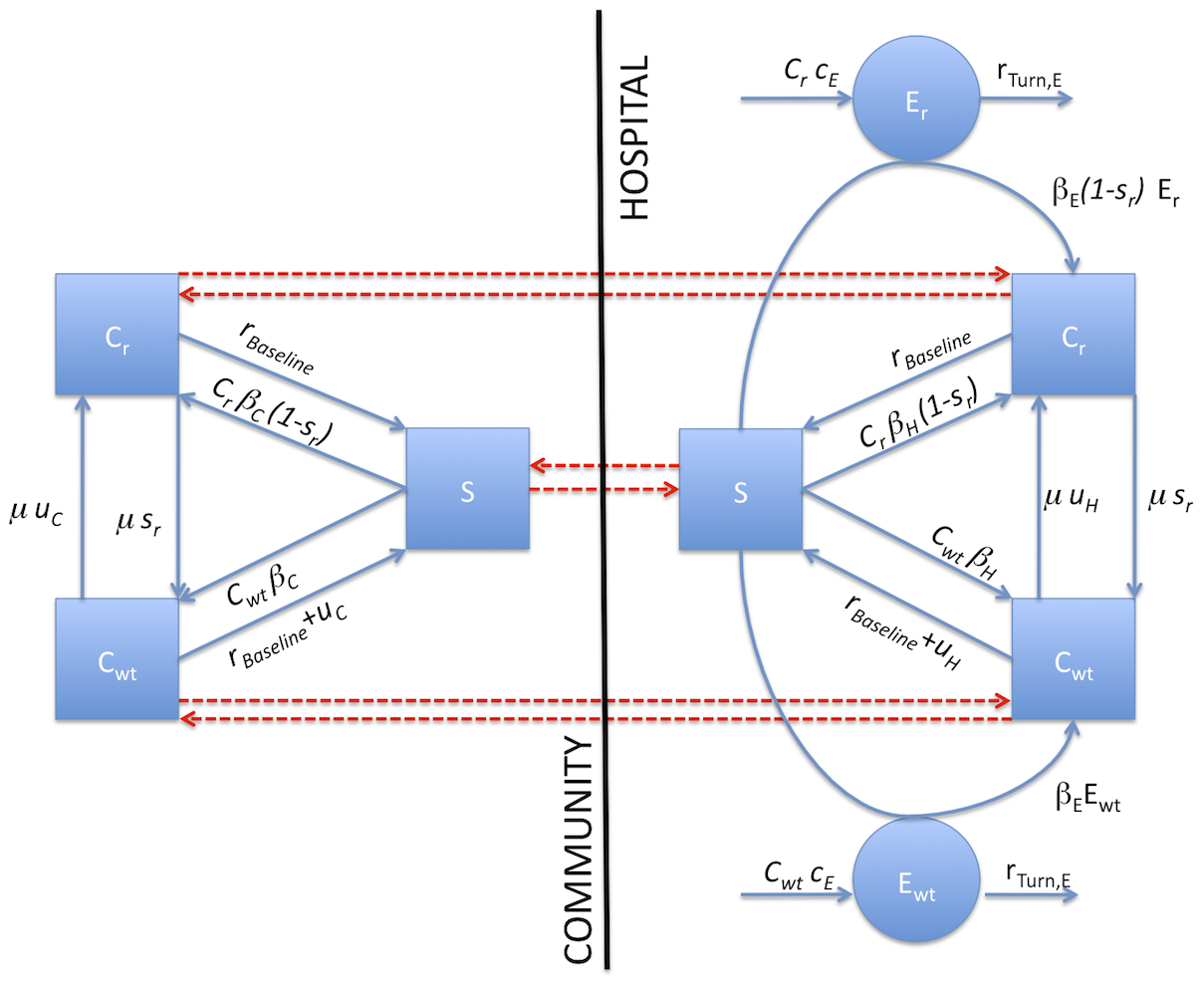 Flow chart of compartmental model in the simplest case (only one hospital and one community).