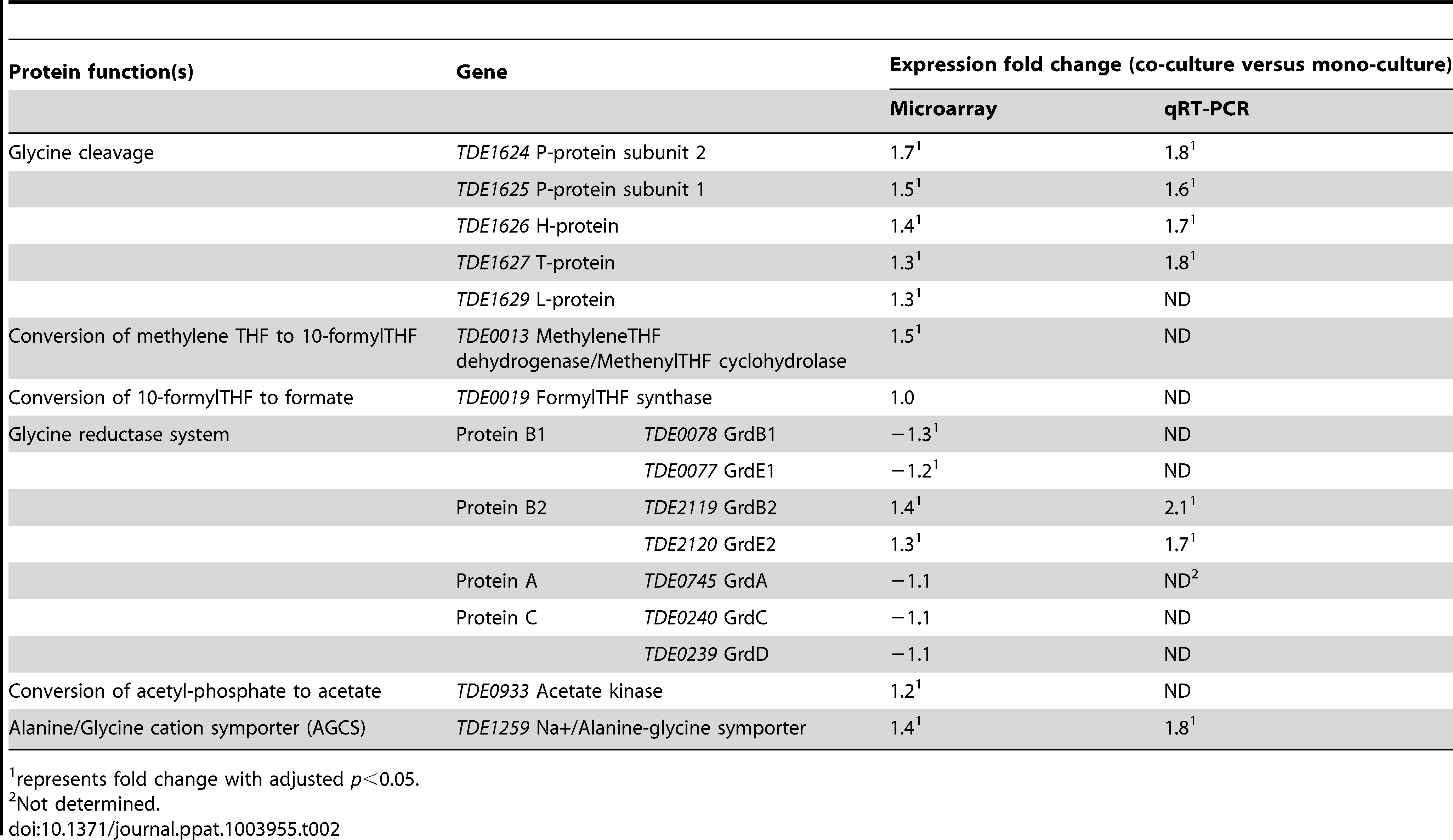 Expression of <i>T. denticola</i> genes encoding enzymes involved in glycine or glycine-related metabolism during co-culture with <i>P. gingivalis</i>.
