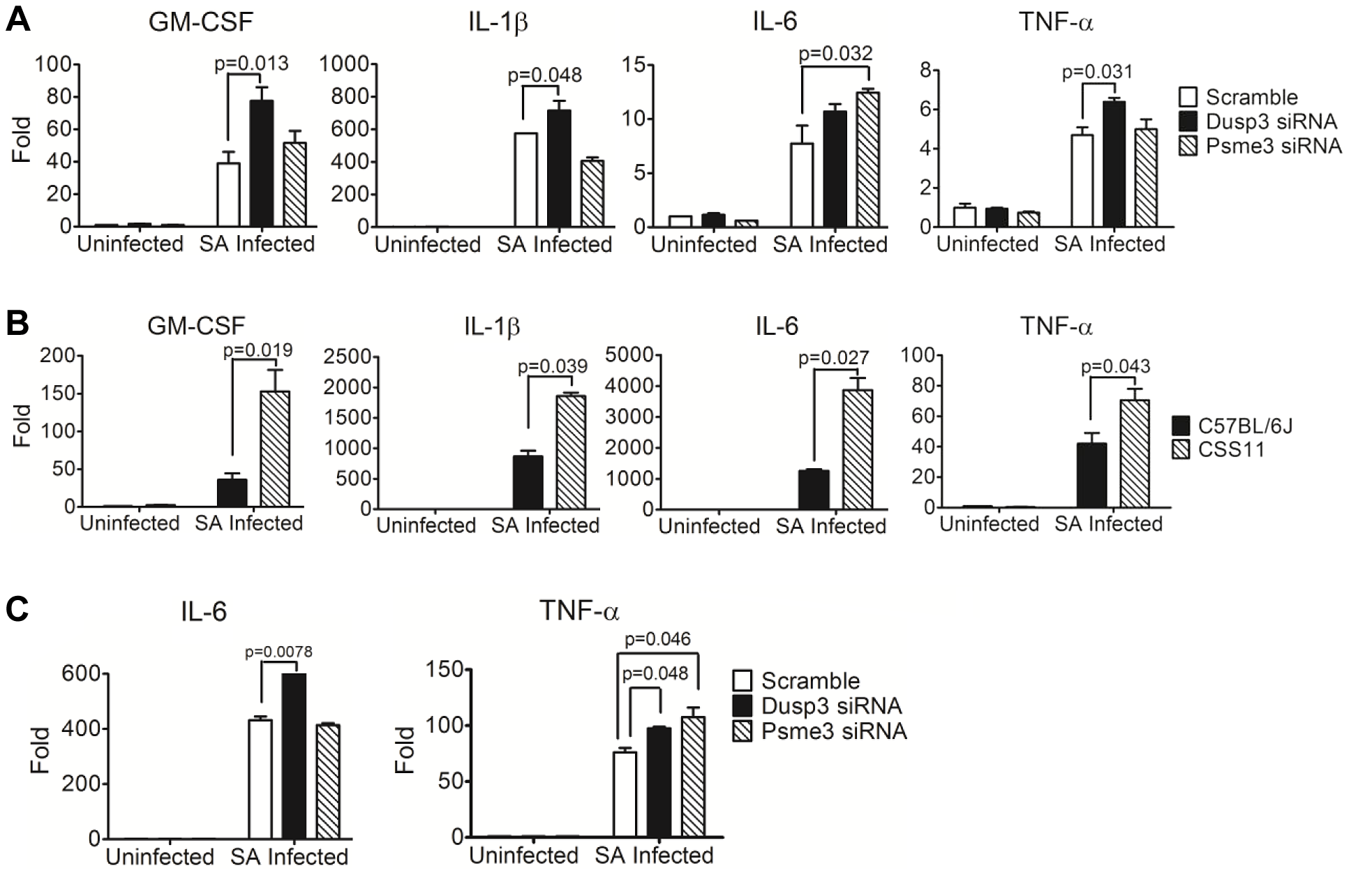 Quantitative-PCR confirmed elevation of cytokine production in macrophages transfected by <i>Dusp3</i> and <i>Psme3</i> siRNA or BMDMs from CSS11(GM-CSF, IL-1β, IL-6, and TNF-α).