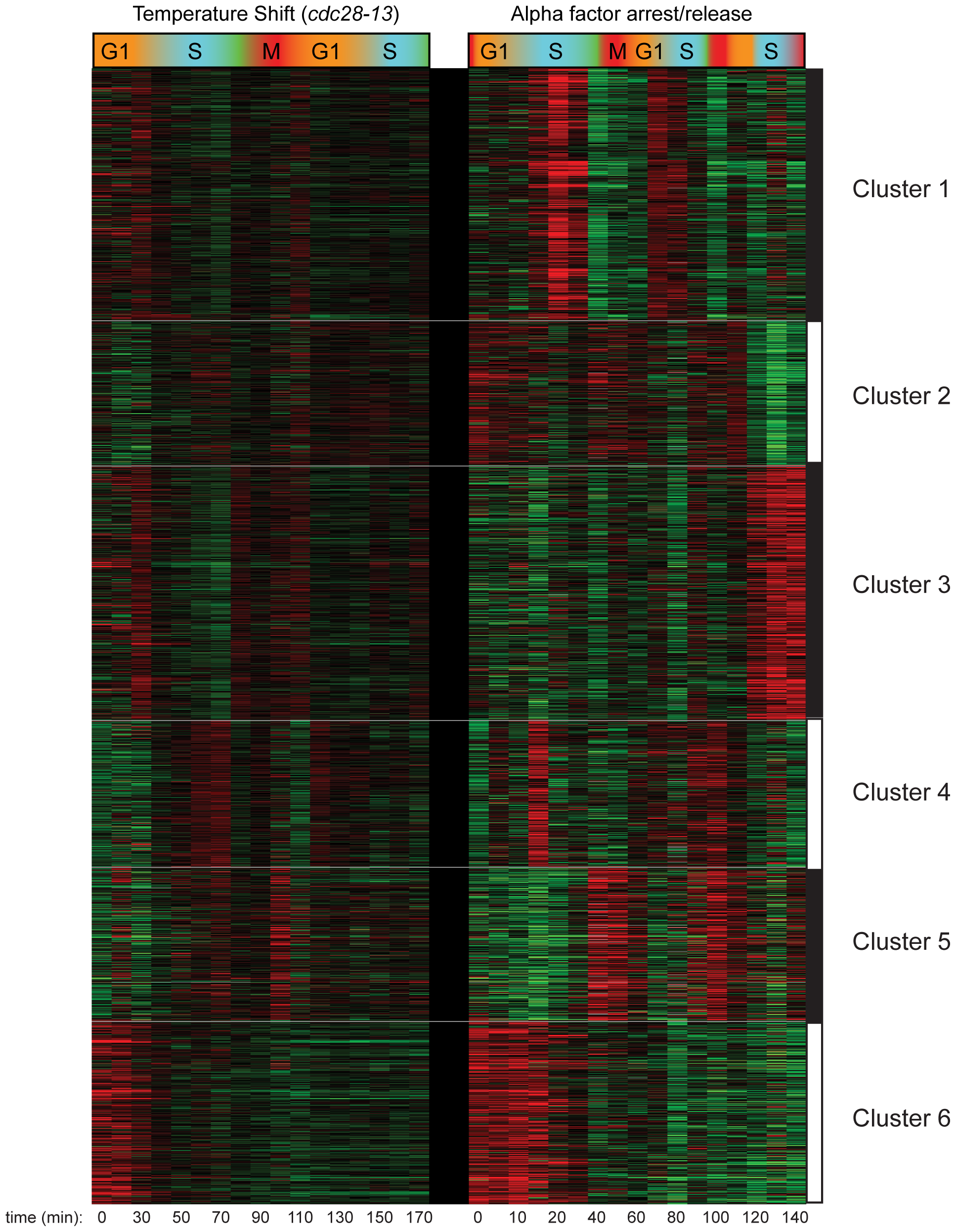 Clustering of CCTS and CCA H3K4me3 patterns.