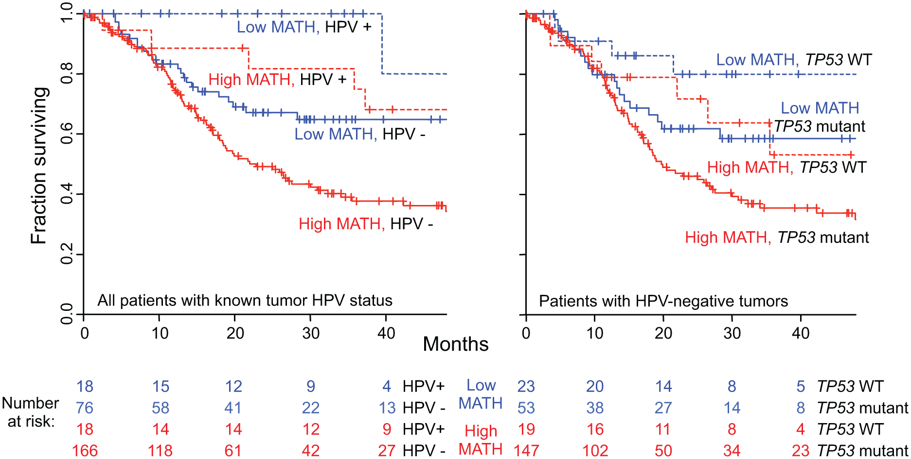Combined relation of MATH and HPV or <i>TP53</i> mutation status to overall survival.