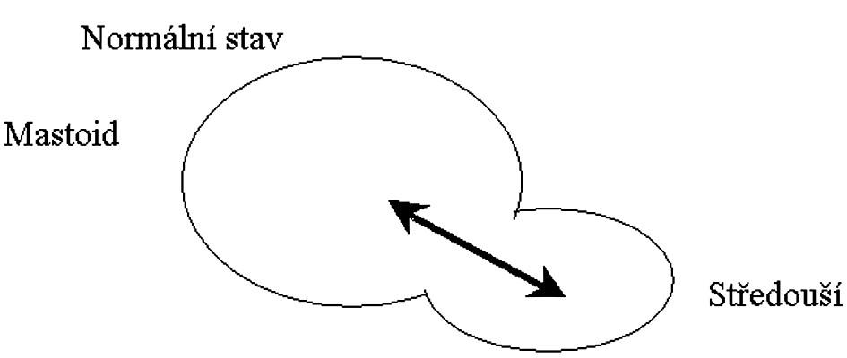 Distribuční prostor u zdravého ucha.