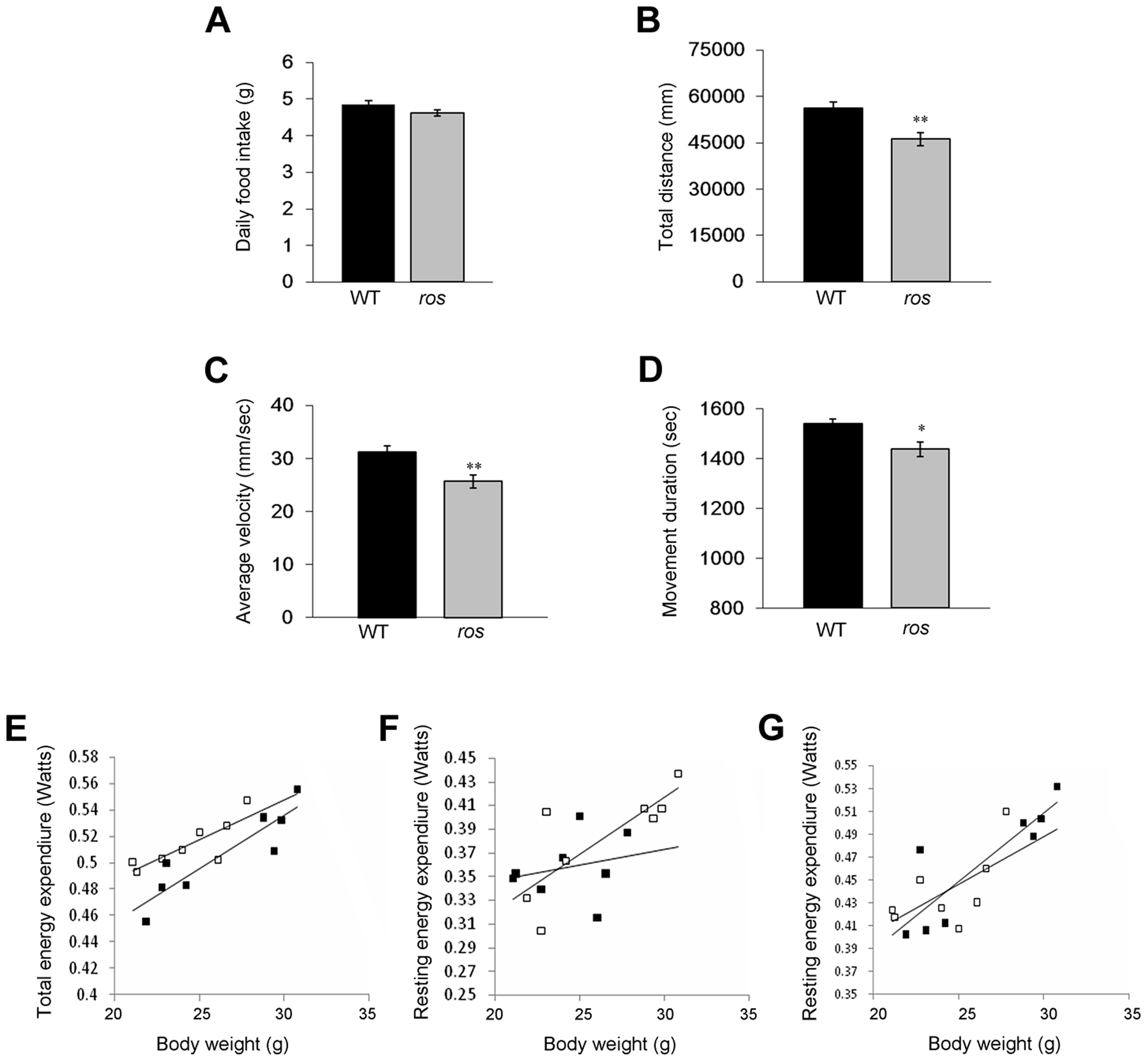Food intake, spontaneous locomotor activity and total and resting energy expenditure.