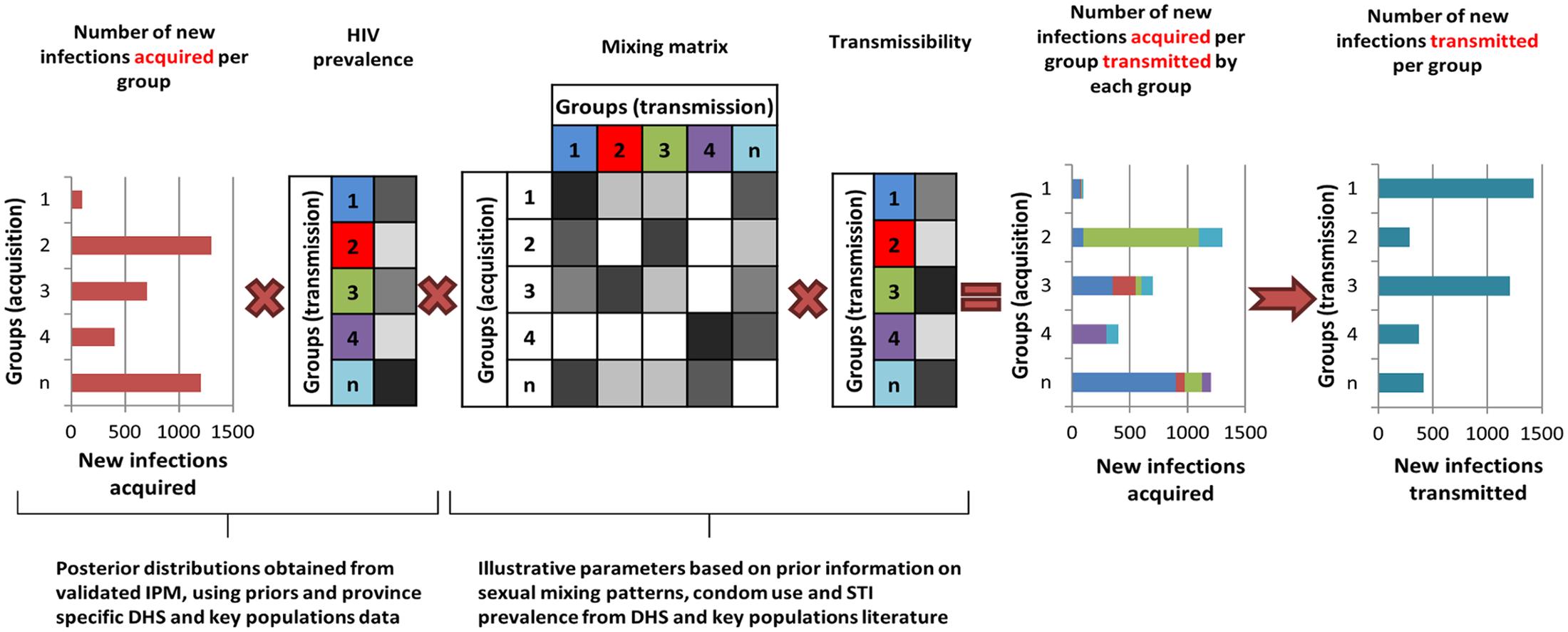 The transmission model based on the Incidence Patterns Model.