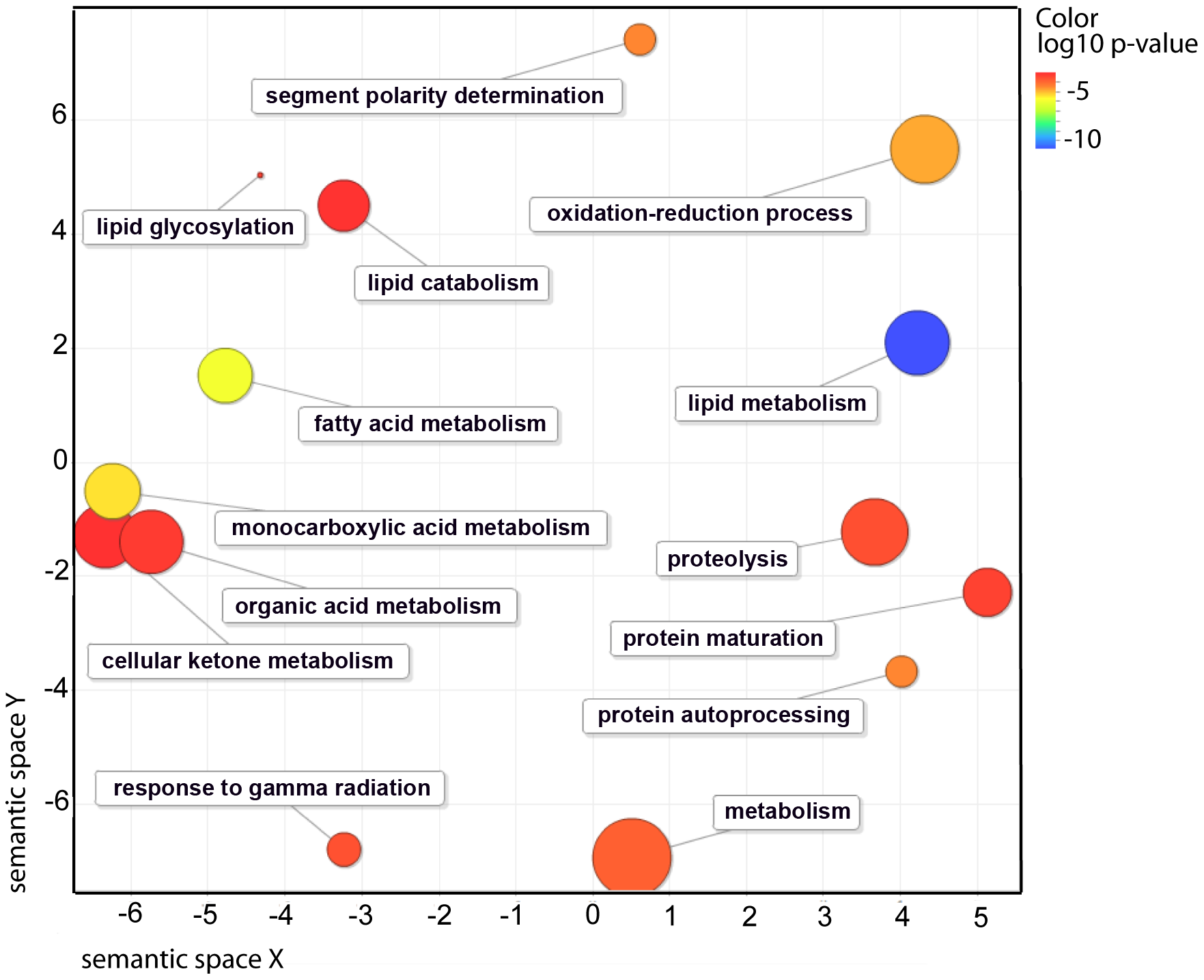 Functional classification summary for the <i>nhr-49</i> mutant are represented as a scatter plot using the GO visualization tool REViGO.