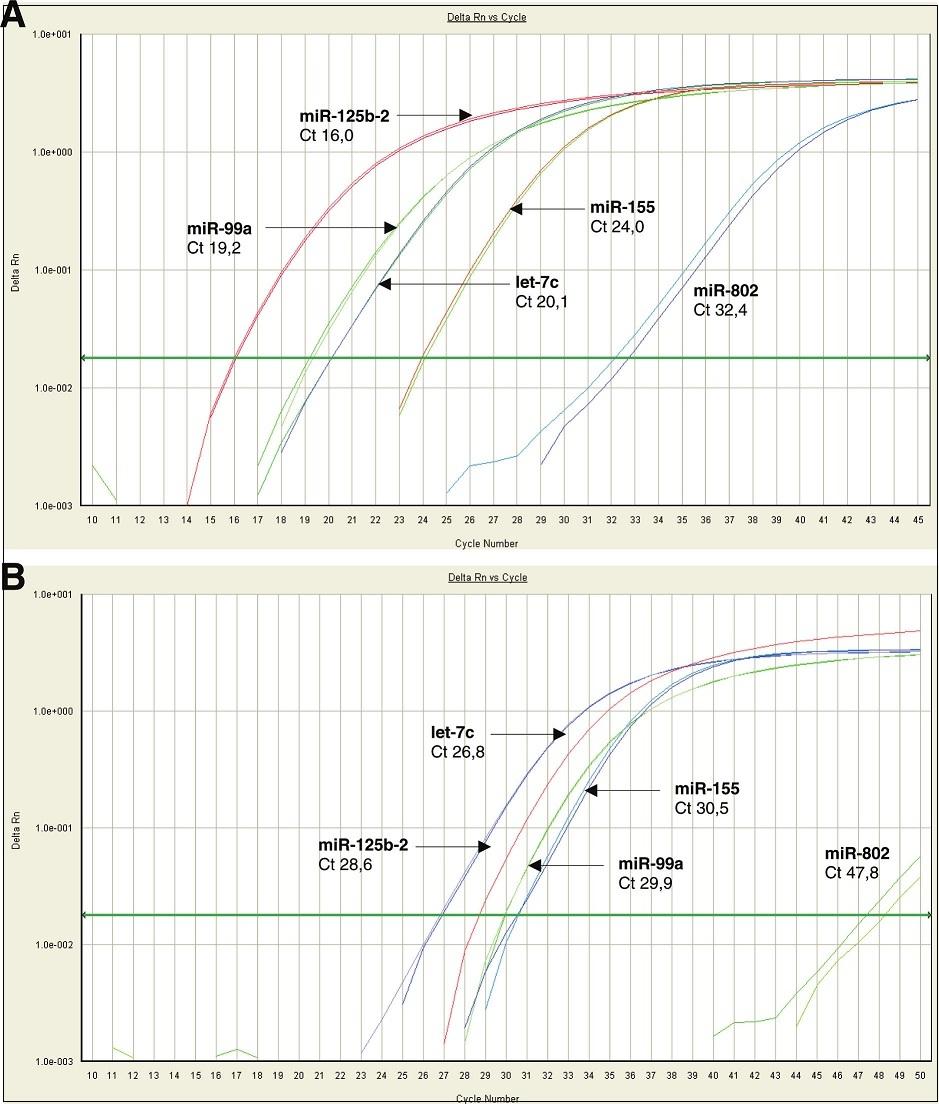 Detekce chromozom 21 specifických mikroRNA ve fetální části placenty (A) a v mateřské cirkulaci u těhotenství s fyziologickým průběhem (B).