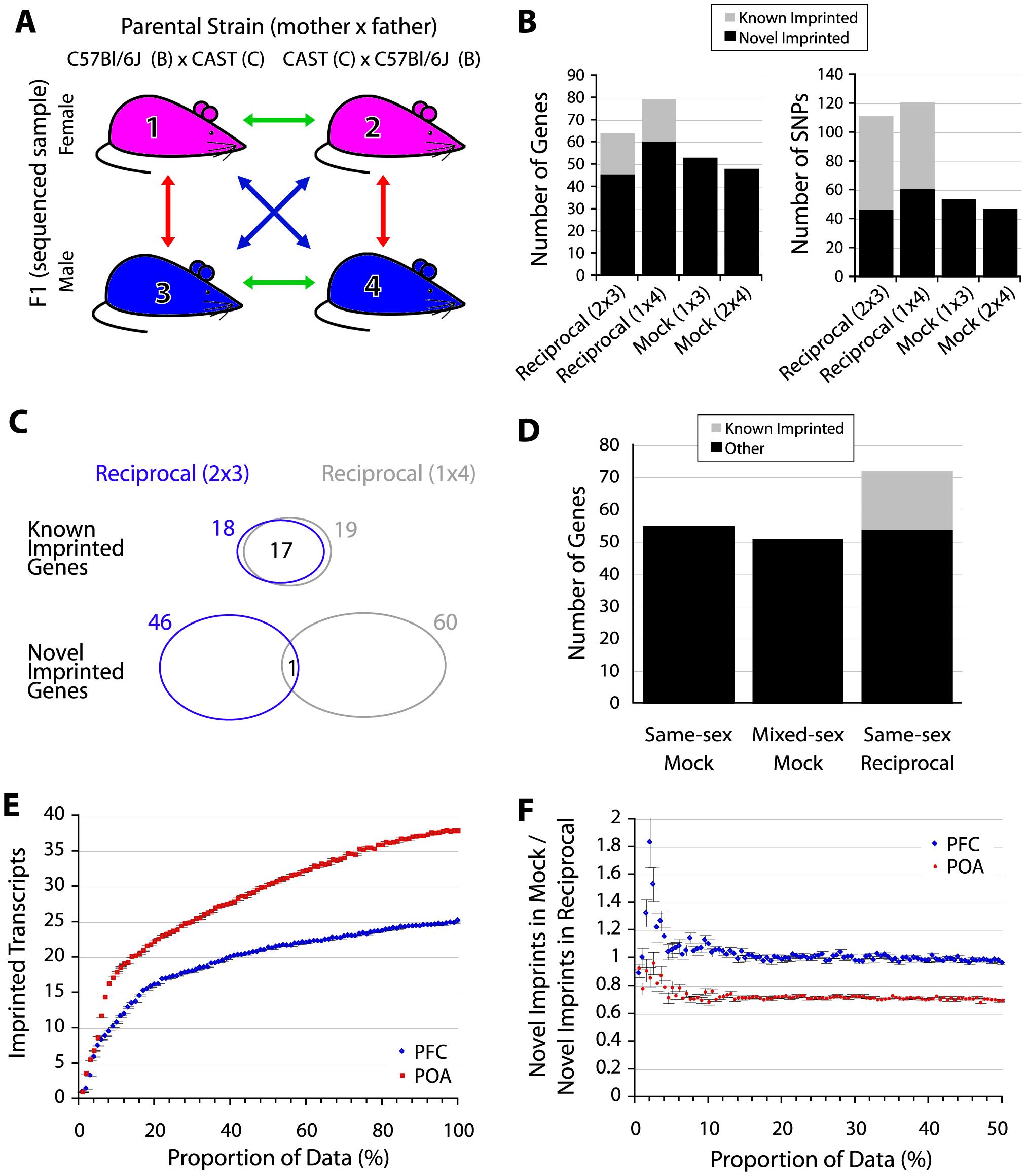 False discoveries explain the majority of novel imprinted genes.