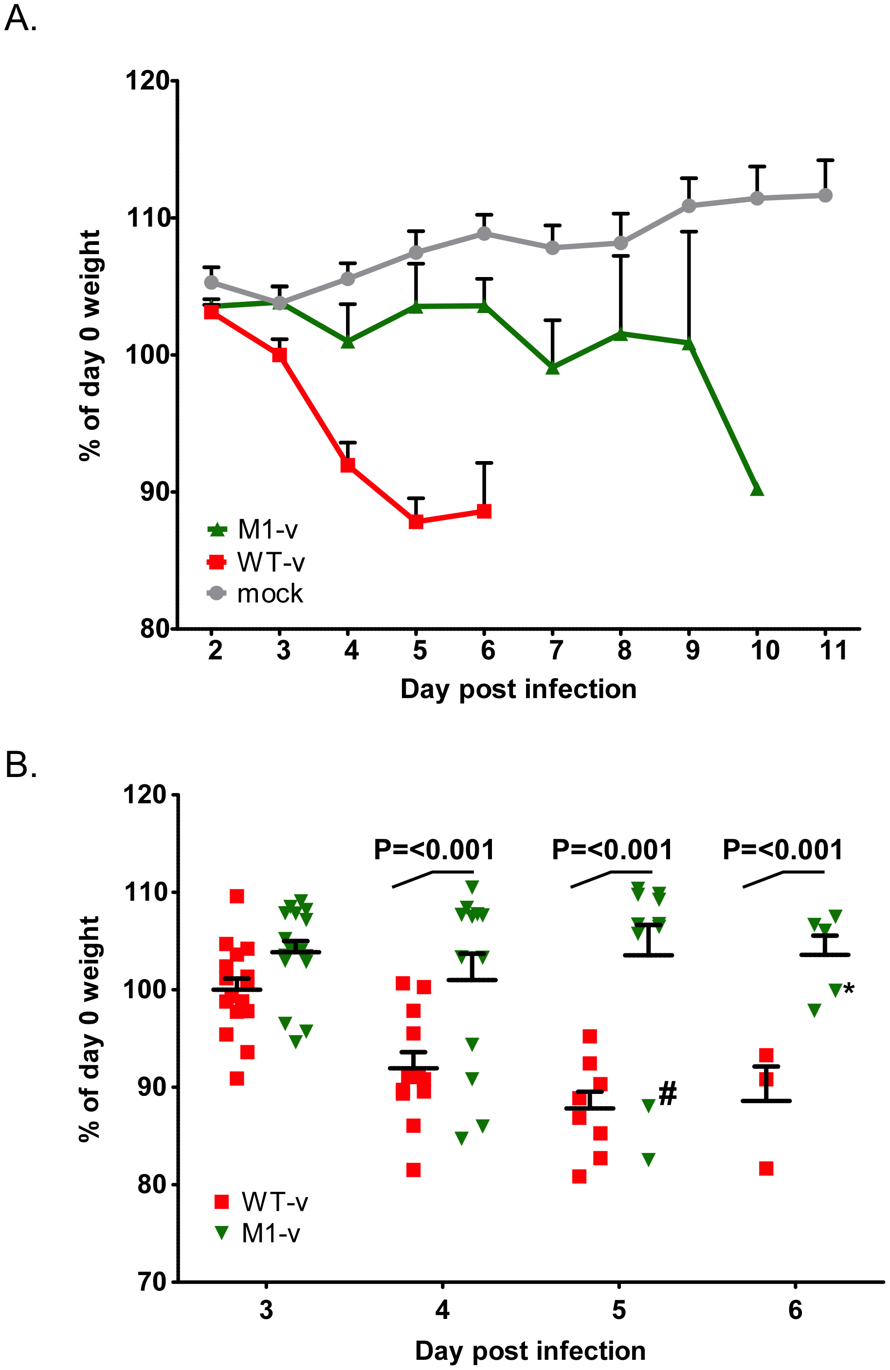 VF1 plays a role in viral virulence.
