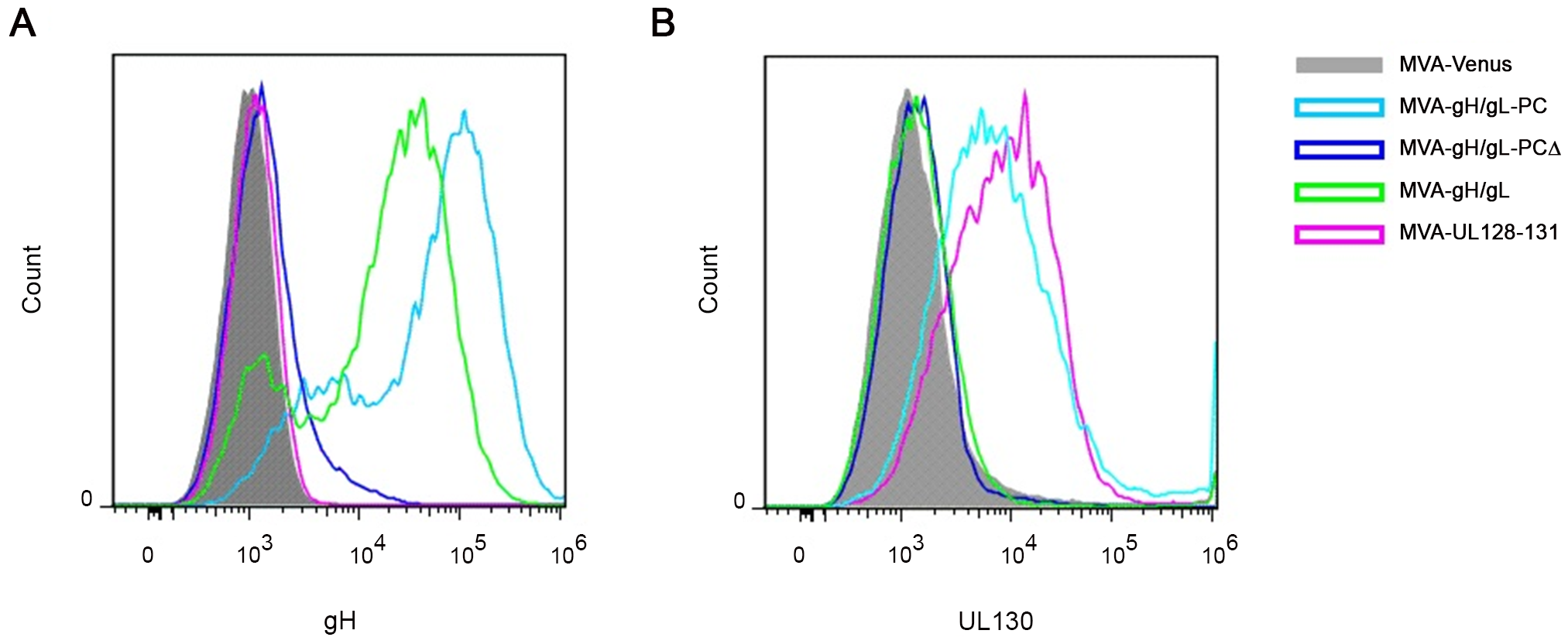 Cell surface detection of gH and UL130 expressed from MVA recombinants.