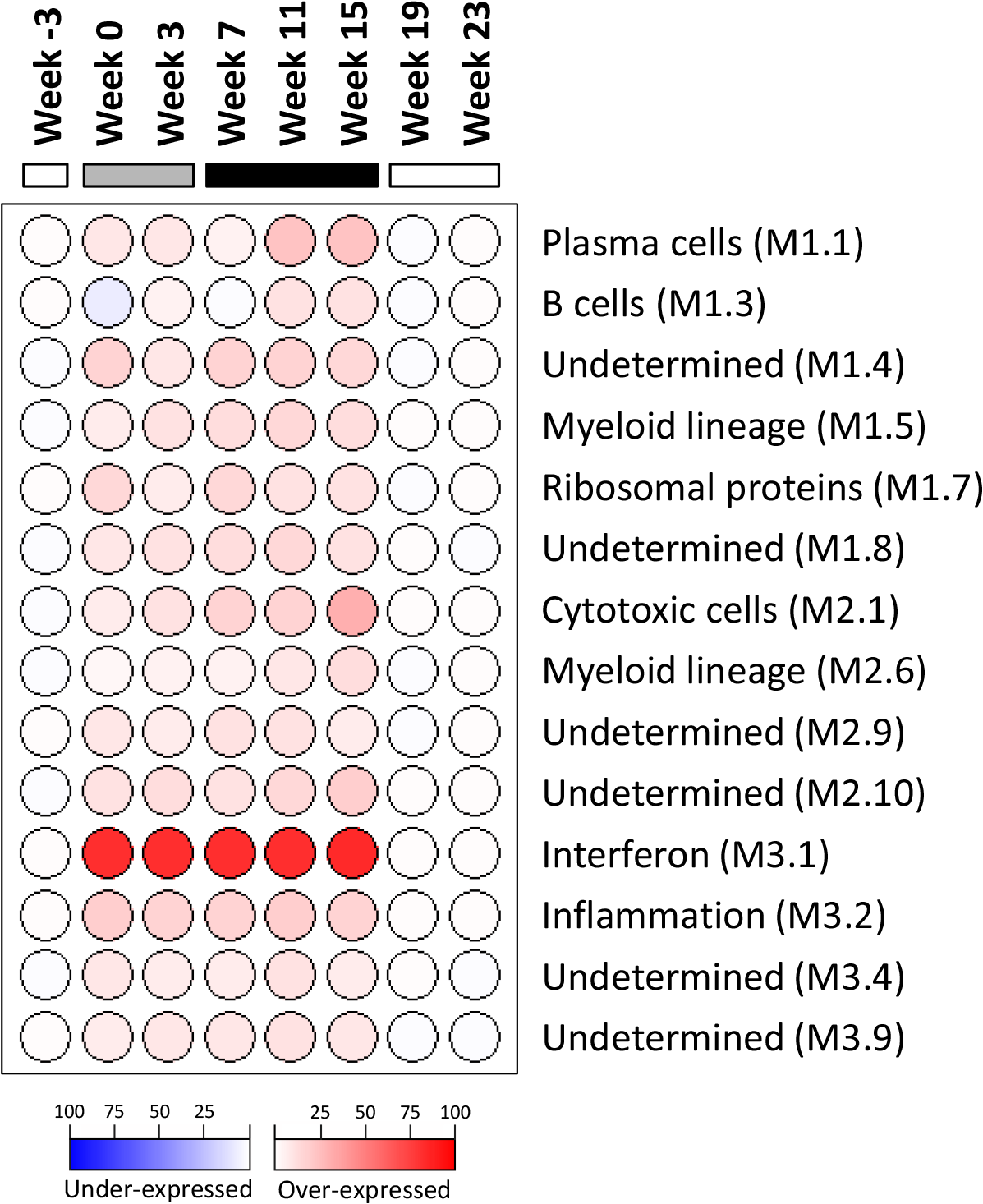 Modular analysis of intrahepatic transcriptional signatures in the wIFN-α treatment group.