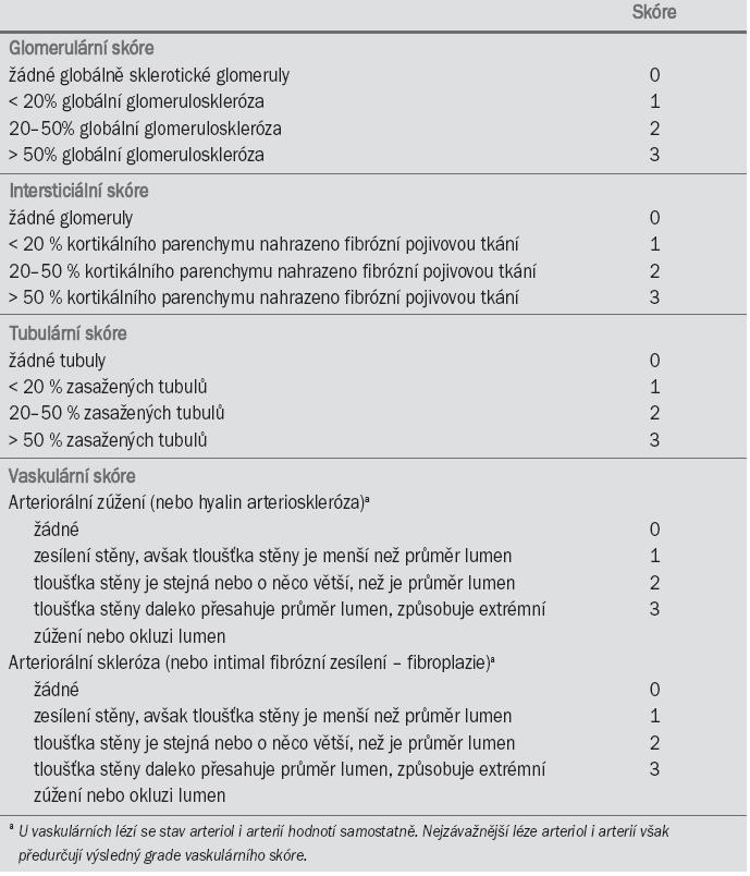 Semi-kvantitativní stupnice pro určování skóre renální biopsie (Karpinski et al, 1999).