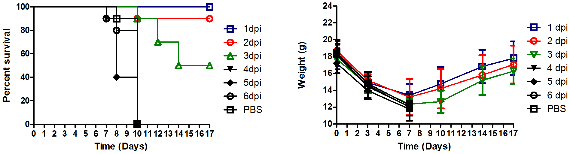Antibody A06 therapy protects Balb/C mice from death by 2009 pandemic H1N1 influenza infection.