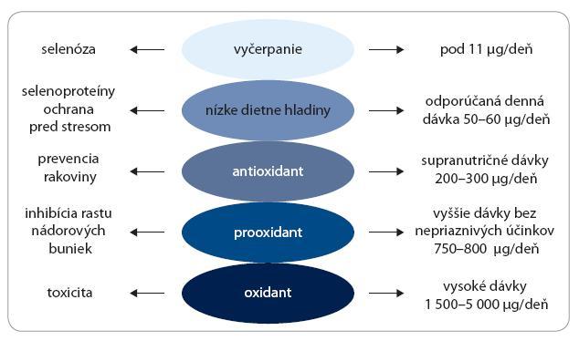 Predpokladané aktivity selénu v závislosti od dávky.