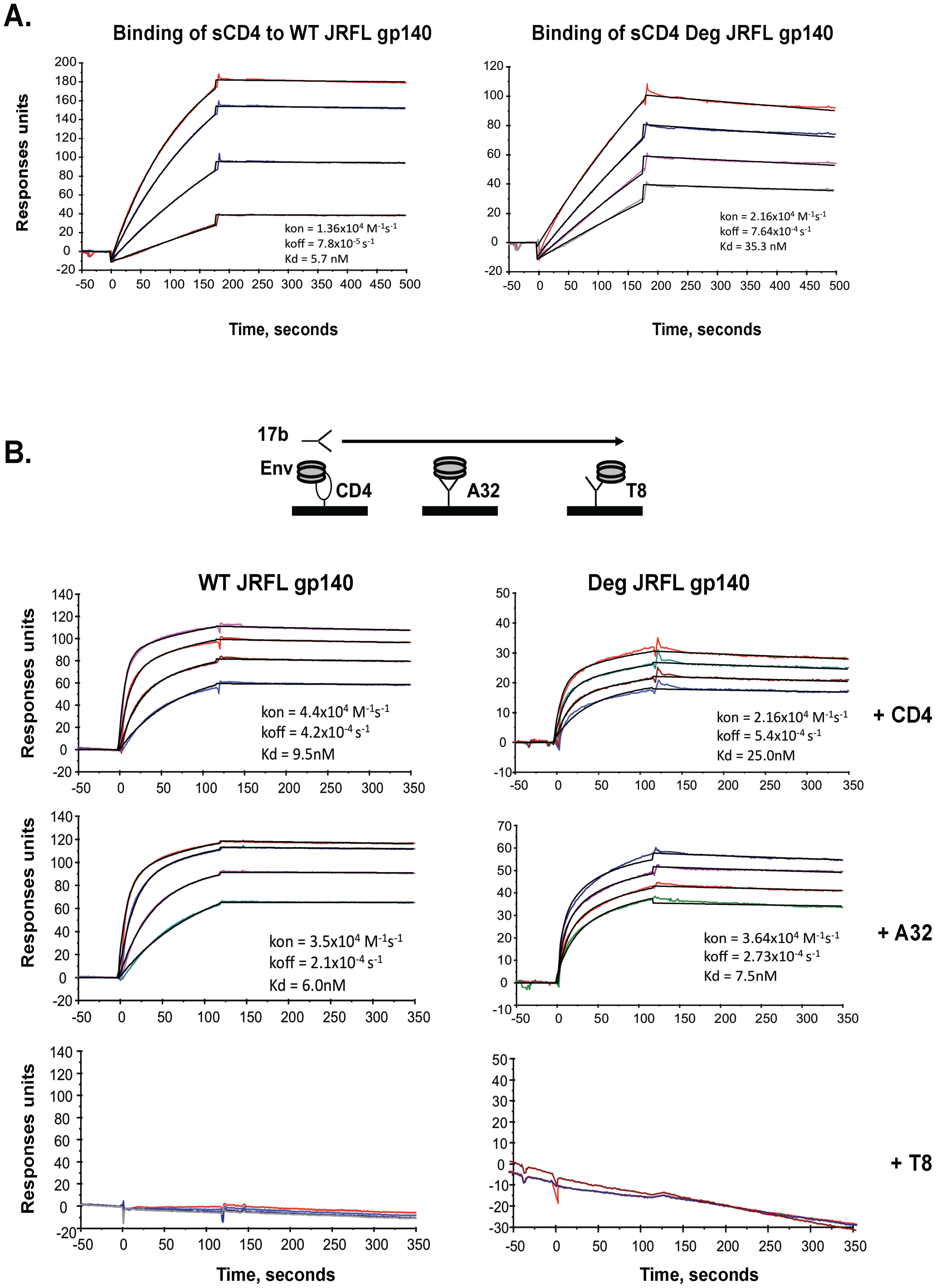 Analysis of antigenic epitopes expressed on WT glycosylated and deglycosylated JRFL gp140 by surface plasmon resonance (SRP).