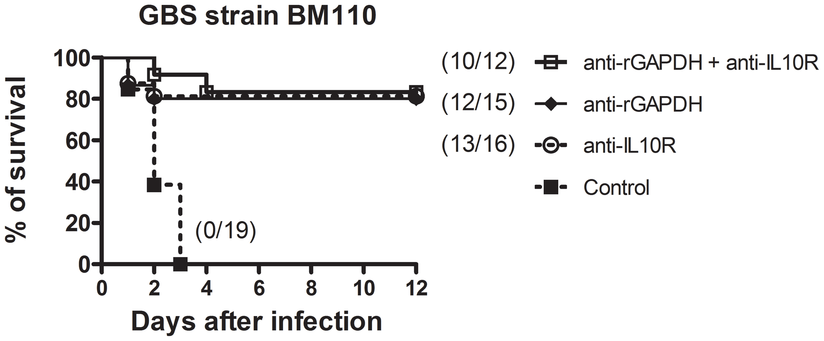 Simultaneous injection of anti-rGAPDH IgG's and anti-IL10R mAb does not increase survival of newborn mice infected with GBS BM110.