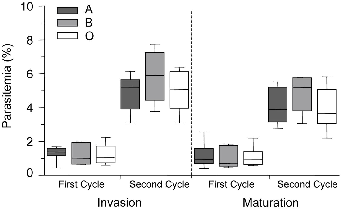 <i>P. falciparum</i> parasite invasion of A, B and O erythrocytes.