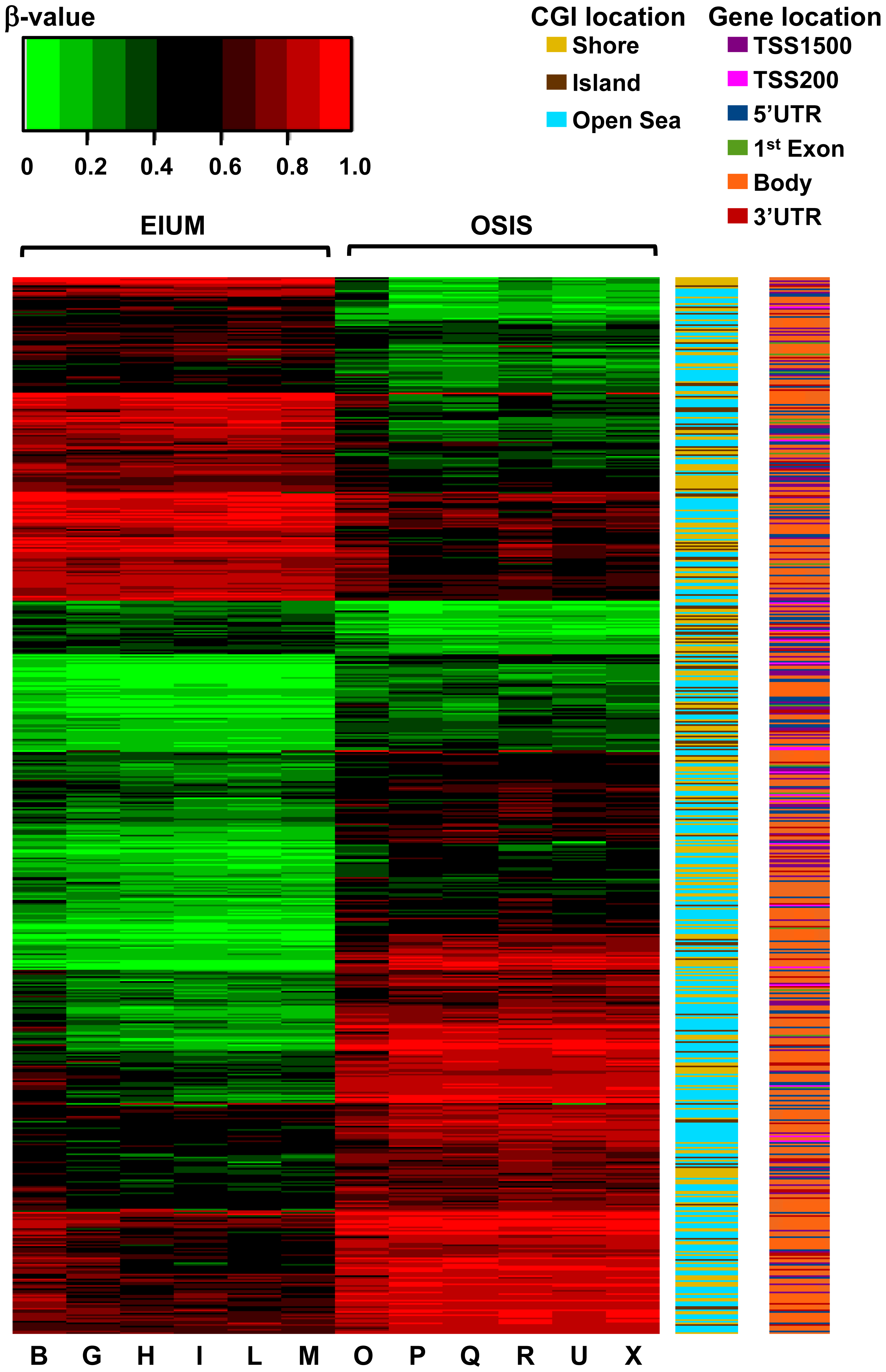 A combined heat map shows the differential methylation of the 5,423 matched CpGs in conjunction with gene and CGI context for EIUM and OSIS.