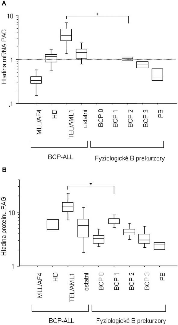 Hladina exprese mRNA (A) a proteinu (B) genu PAG v průběhu fyziologického vývoje B lymfocytu a u dětských BCP-ALL.  BCP-ALL, B-prekurzorová leukemie; MLL/AF4 (mRNA n = 5); HD, hyperdiploidní (mRNA n = 8, protein n = 4); TEL/AML1 (mRNA n = 15, protein n = 6); ostatní, ne-hyperdiploidní, fúzní geny negativní B-prekurzorová leukemie (mRNA n = 8, protein n = 16); fyziologická BCP 0, CD34+CD19- buňky (protein n = 8); fyziologická BCP 1, CD19+CD10+CD34+ (protein n = 8); fyziologická BCP 2, CD10+CD20+/- v analýze mRNA (n=2) a CD19+CD10+CD34- v proteinové analýze (n = 8); fyziologická BCP3, CD20+CD10- v analýze mRNA (n = 2) a CD19+CD20+CD10- v proteinové analýze (n = 8); PB, fyziologické periferní B lymfocyty, CD19+ (mRNA n = 4, protein n = 4).