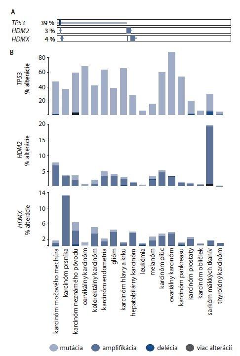 Frekvencia alterácie a výskyt alterácie génov <i>TP53, HDM2</i> a <i>HDMX</i> u vybraných typov karcinómov