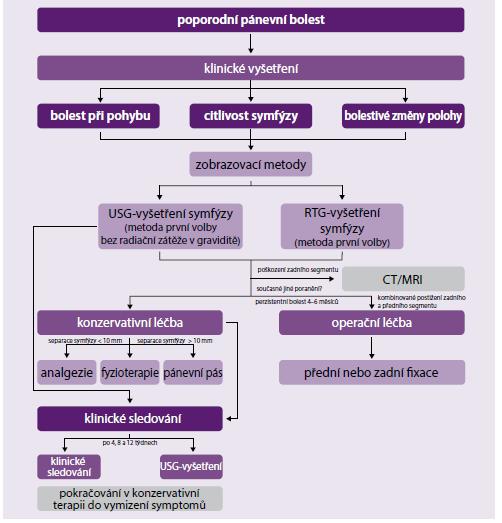 Různé typy osteotomií pánve [12]