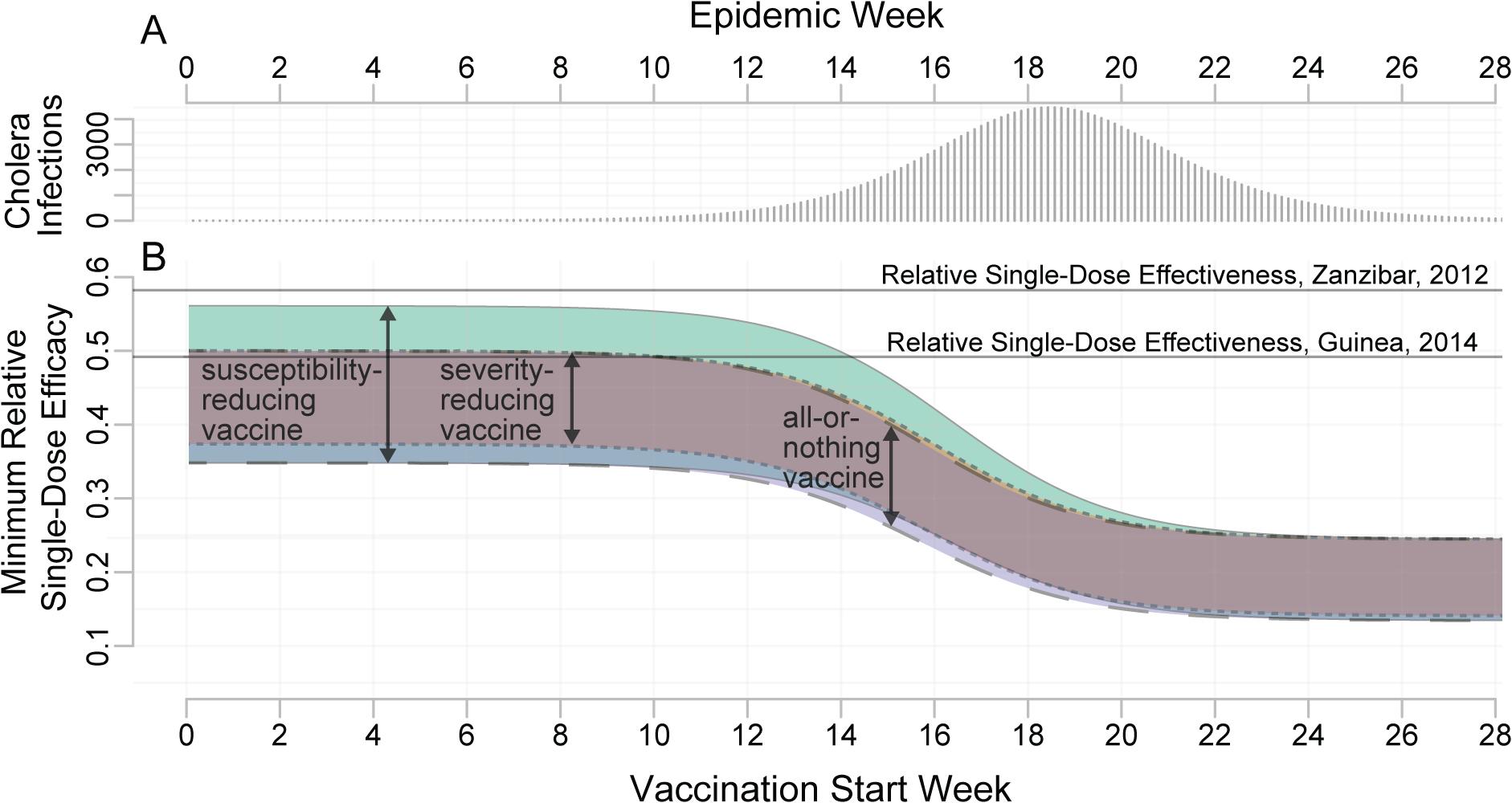 Minimum relative single-dose efficacy for oral cholera vaccine.