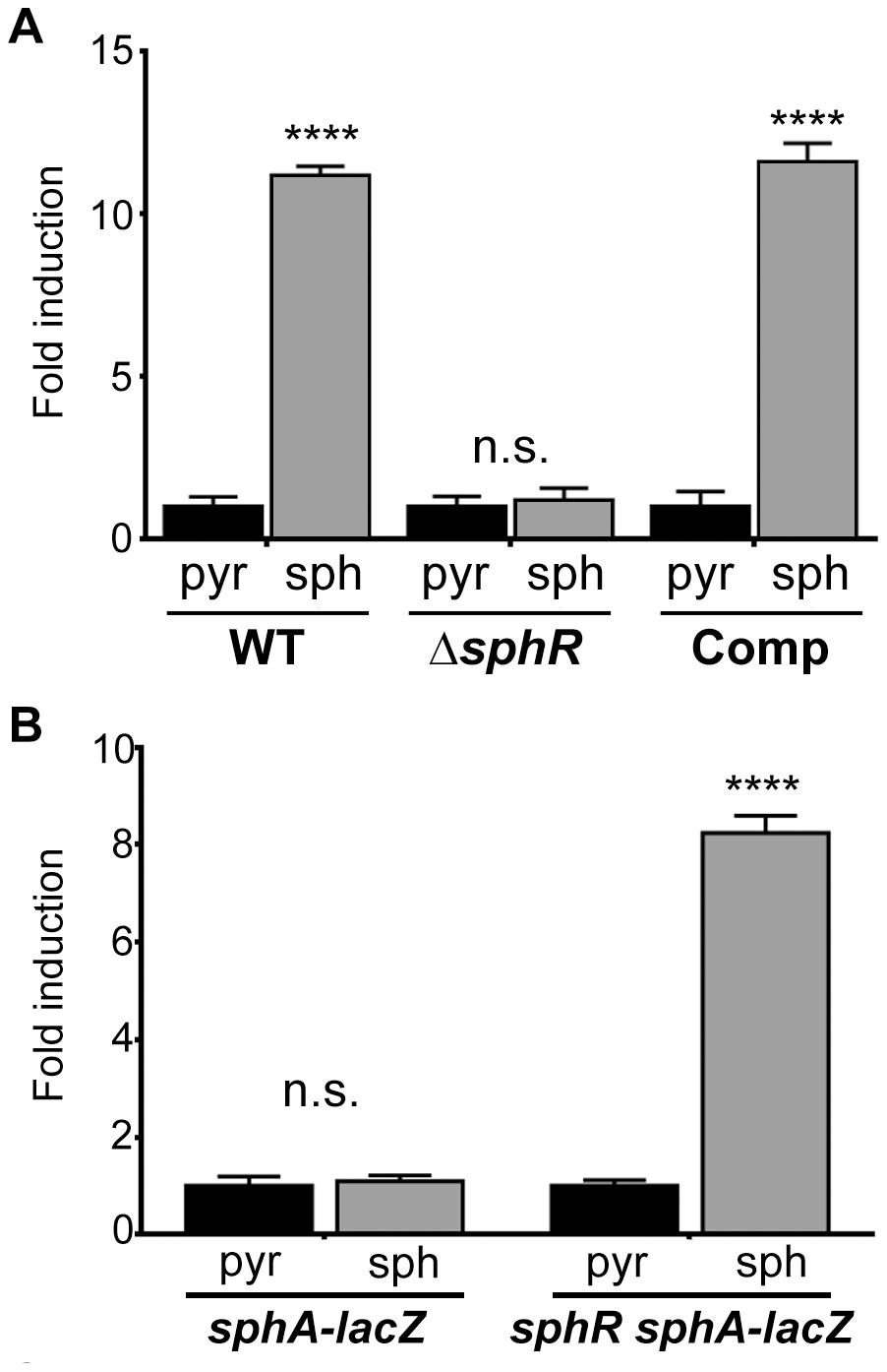 The transcription regulator SphR (PA5324) controls <i>sphA</i> induction in response to sphingosine.