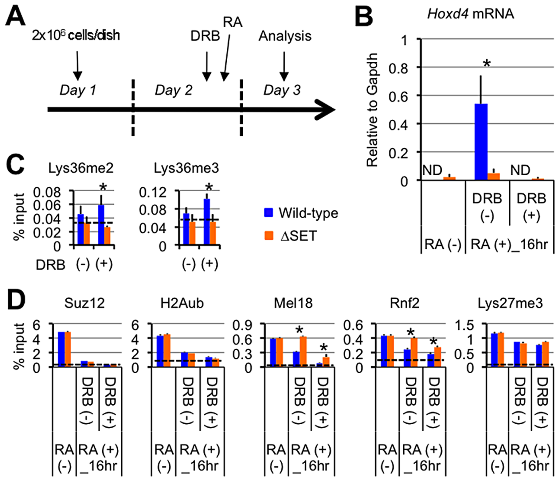 Lys36me2/3 and exclusion of the PRCs occur independently of productive transcriptional elongation.
