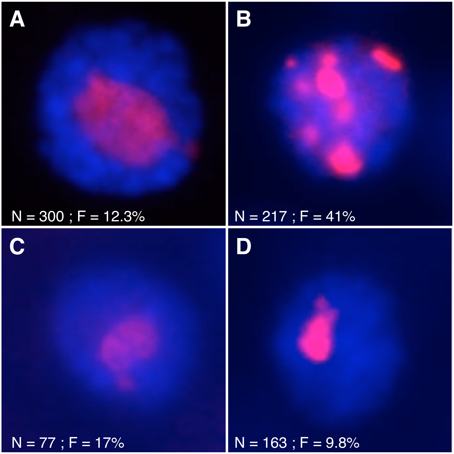 Mutations affecting nutrient signaling perturb nucleolar stability.