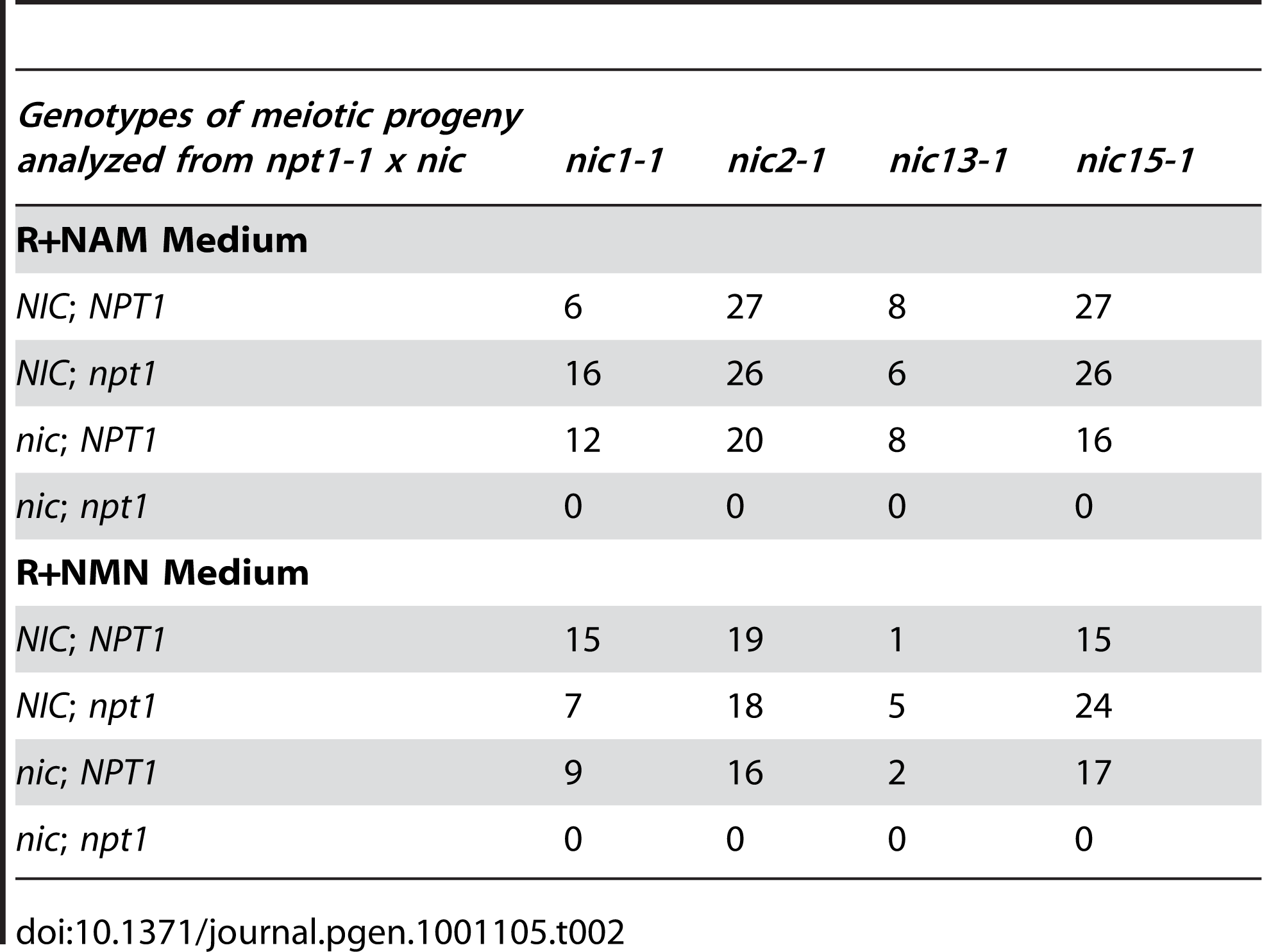 Progeny analysis from crosses between <i>npt1-1</i> and <i>nic</i> mutant strains.