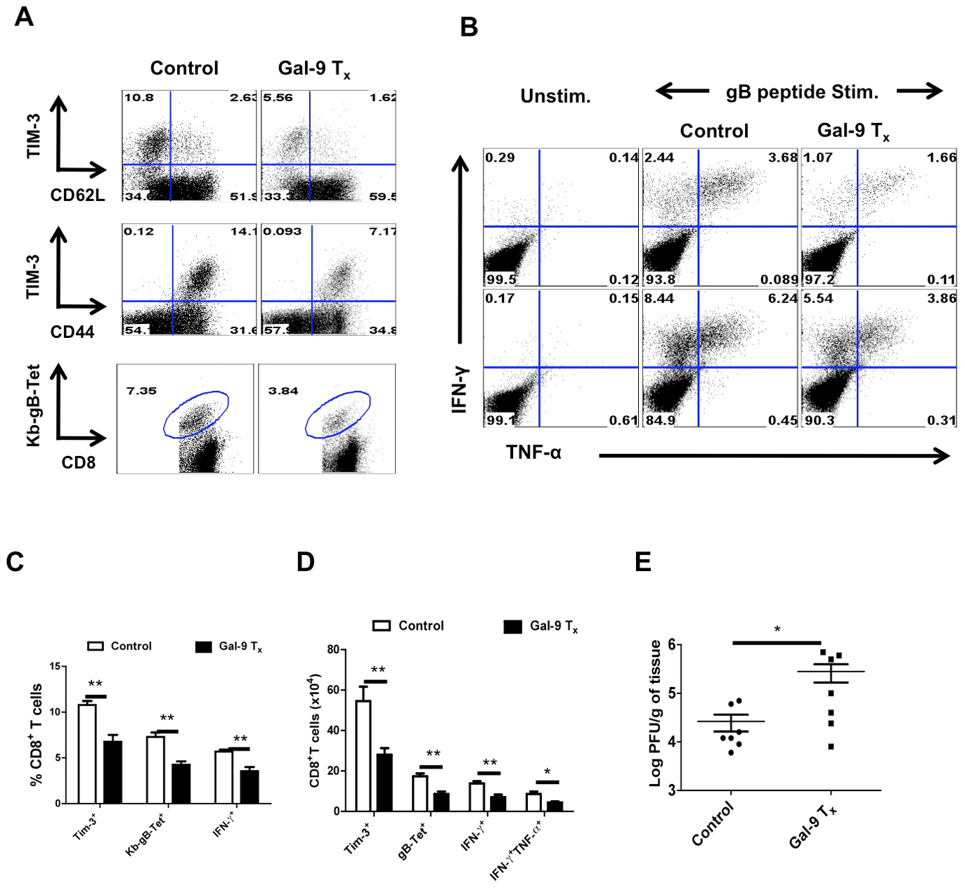 Administration of galectin-9 during the expansion phase after HSV infection diminishes the magnitude of virus-specific CD8<sup>+</sup> T cell responses.