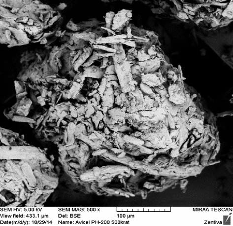 SEM image of Avicel PH-200 particle, magnification 500×