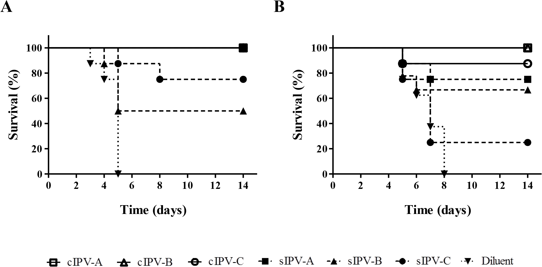 Survival curve analysis of Tg21-bx mice immunised with IPV and challenged with paralytic doses of poliovirus.