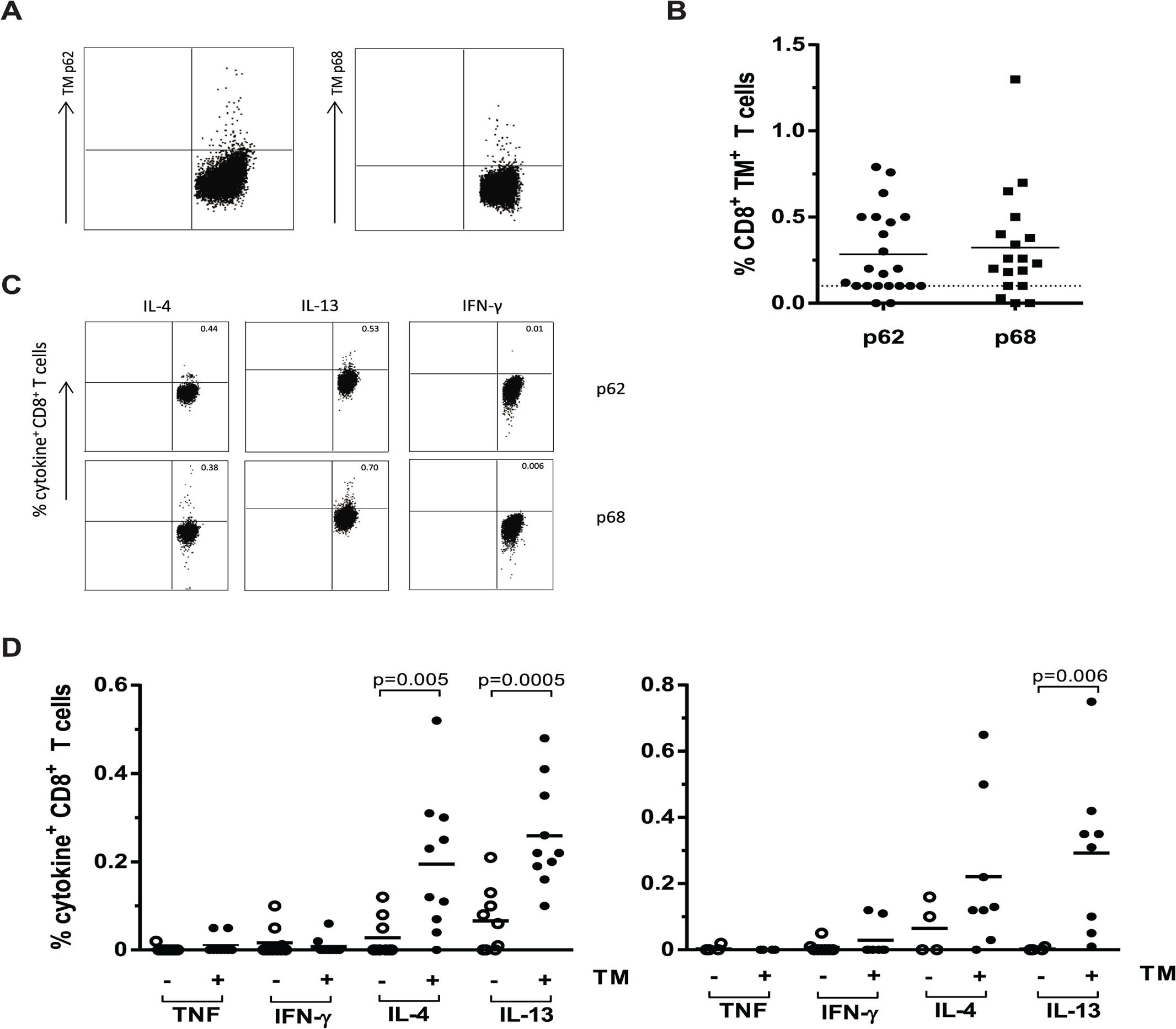 CD8<sup>+</sup> T-cells from TB patients bind HLA-E/ peptide tetramers and produce Th2 cytokines following peptide stimulation.