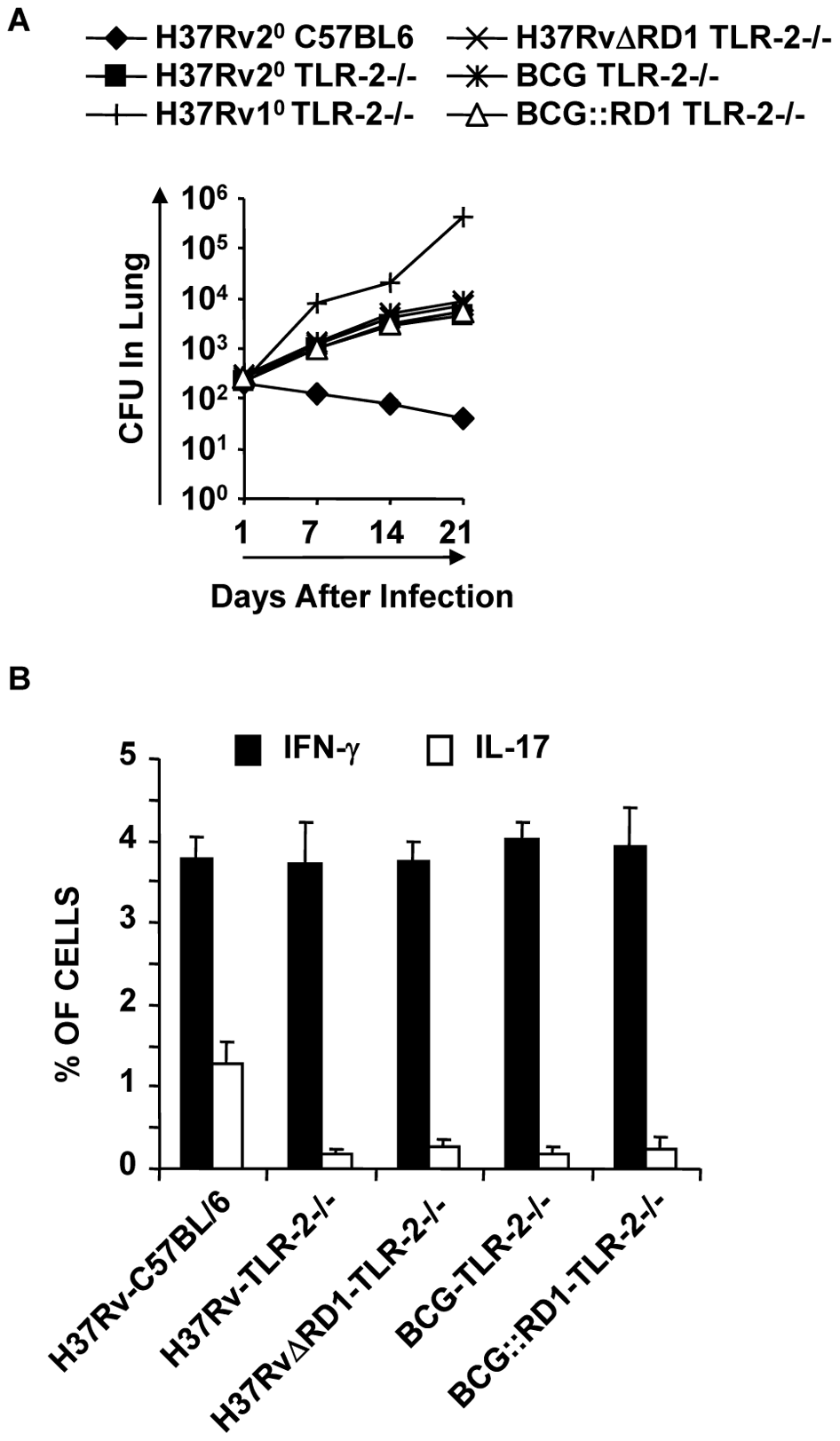 TLR-2-deficient animals induce reduced levels of protective immune responses.