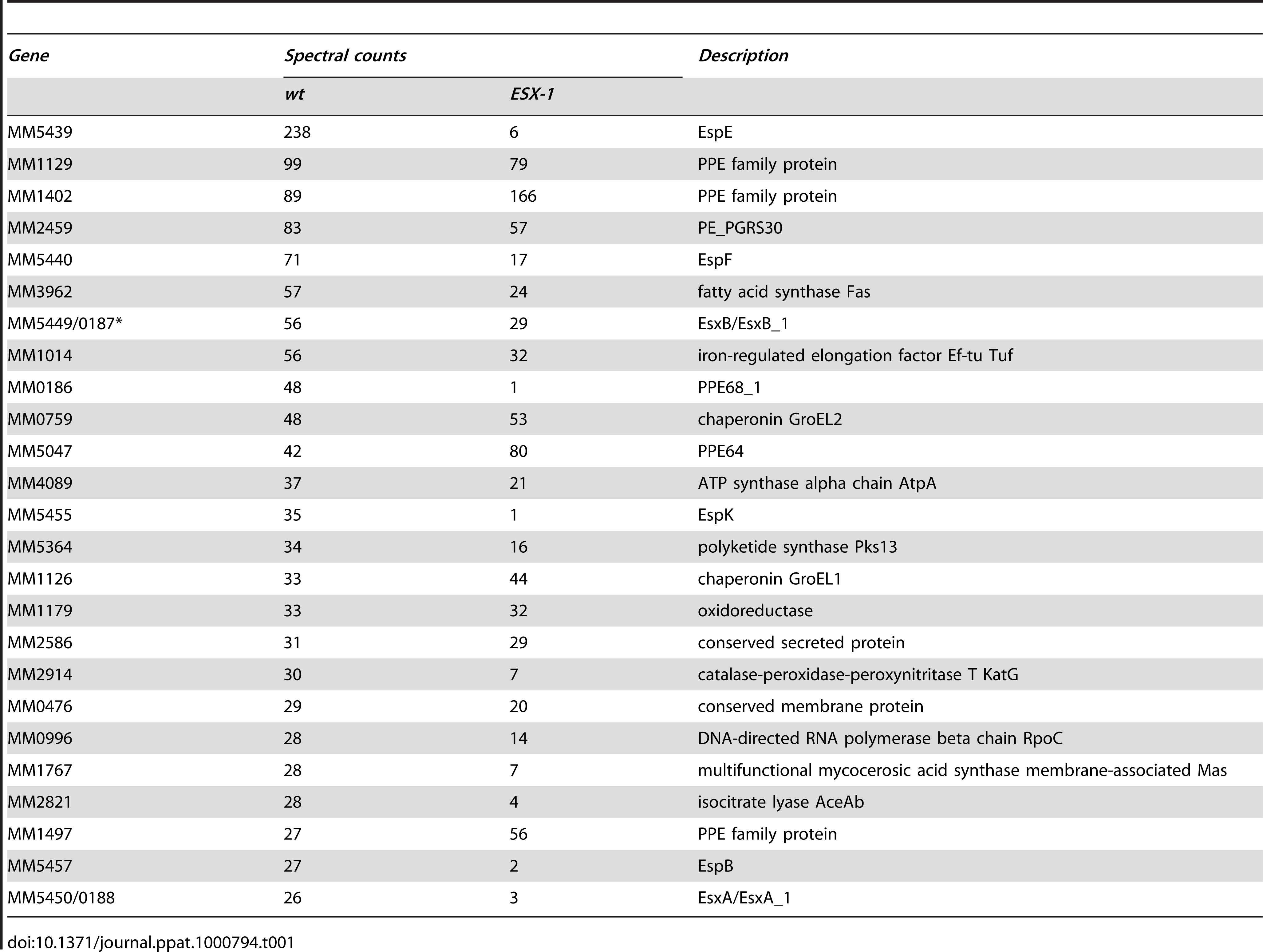 The 25 major cell surface extracted proteins of <i>M. marinum</i>.