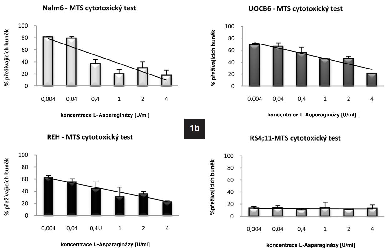 1a. Rozdílná bazální hladina genu pro ASNS u ALL buněčných linií stanovená pomoci qRT-PCR. Množství proteinu ASNS detekované metodou Western Blot. 1b. Výsledek MTS cytotoxického testu ukazující rozdílnou citlivost jednotlivých buněčných linií k L-Asp.