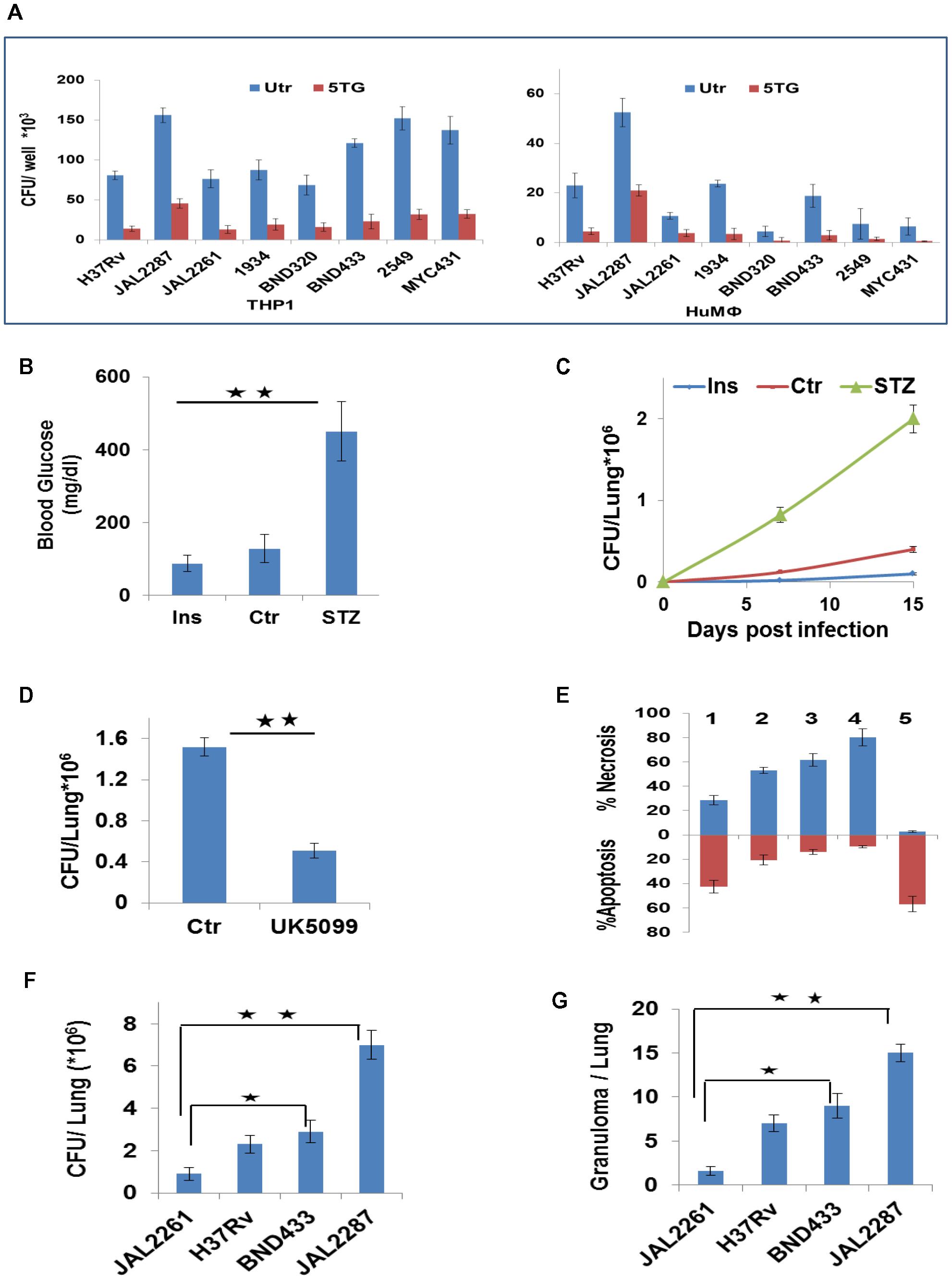 Metabolic thresholds influence Mtb pathogenesis.