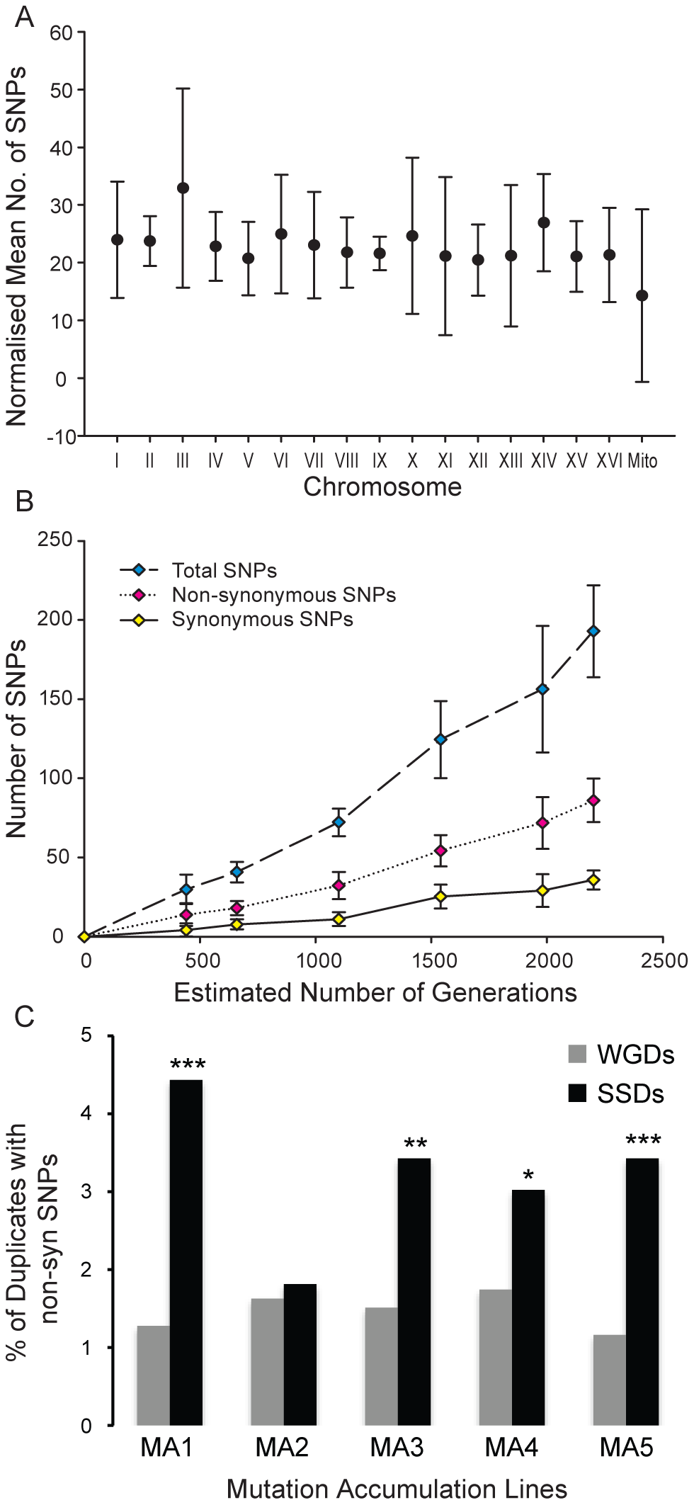 Distribution of single nucleotide polymorphisms in a mutation-accumulation experiment.