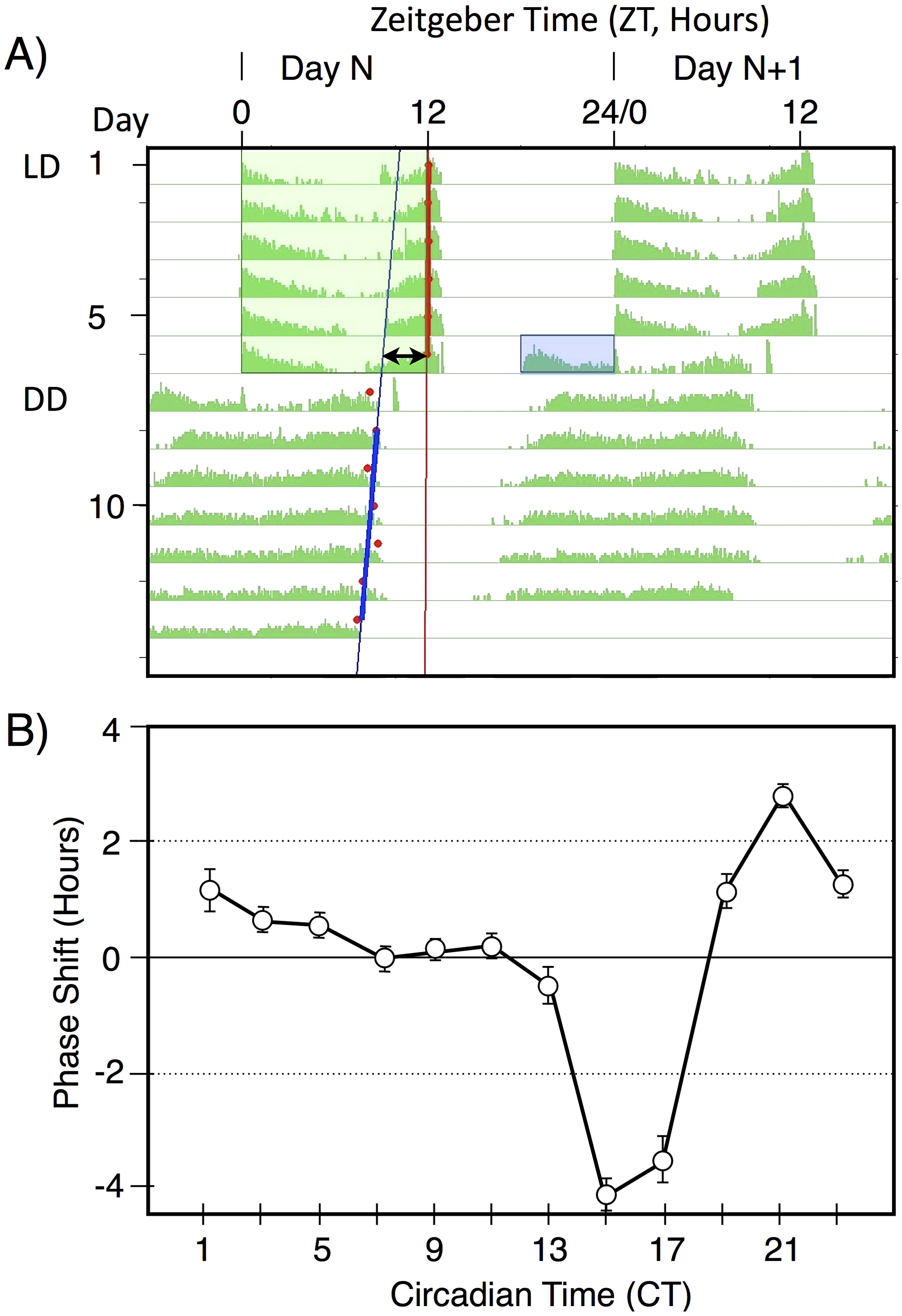 A double-plotted median actogram illustrating the basic paradigm used in this manuscript (A), and a Phase Response Curve (B).