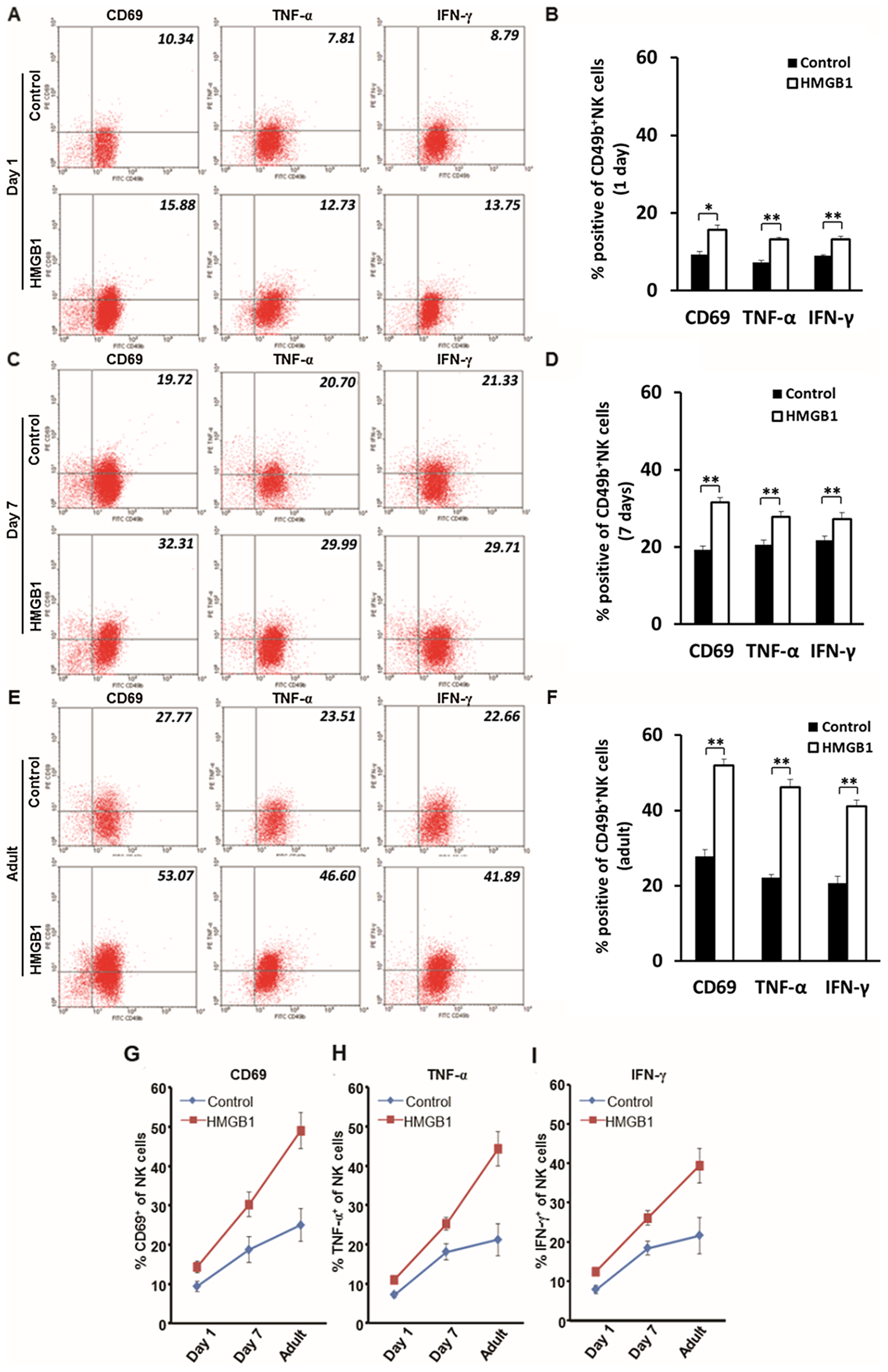 Age affects the activation of NK cells <i>in vitro</i>.