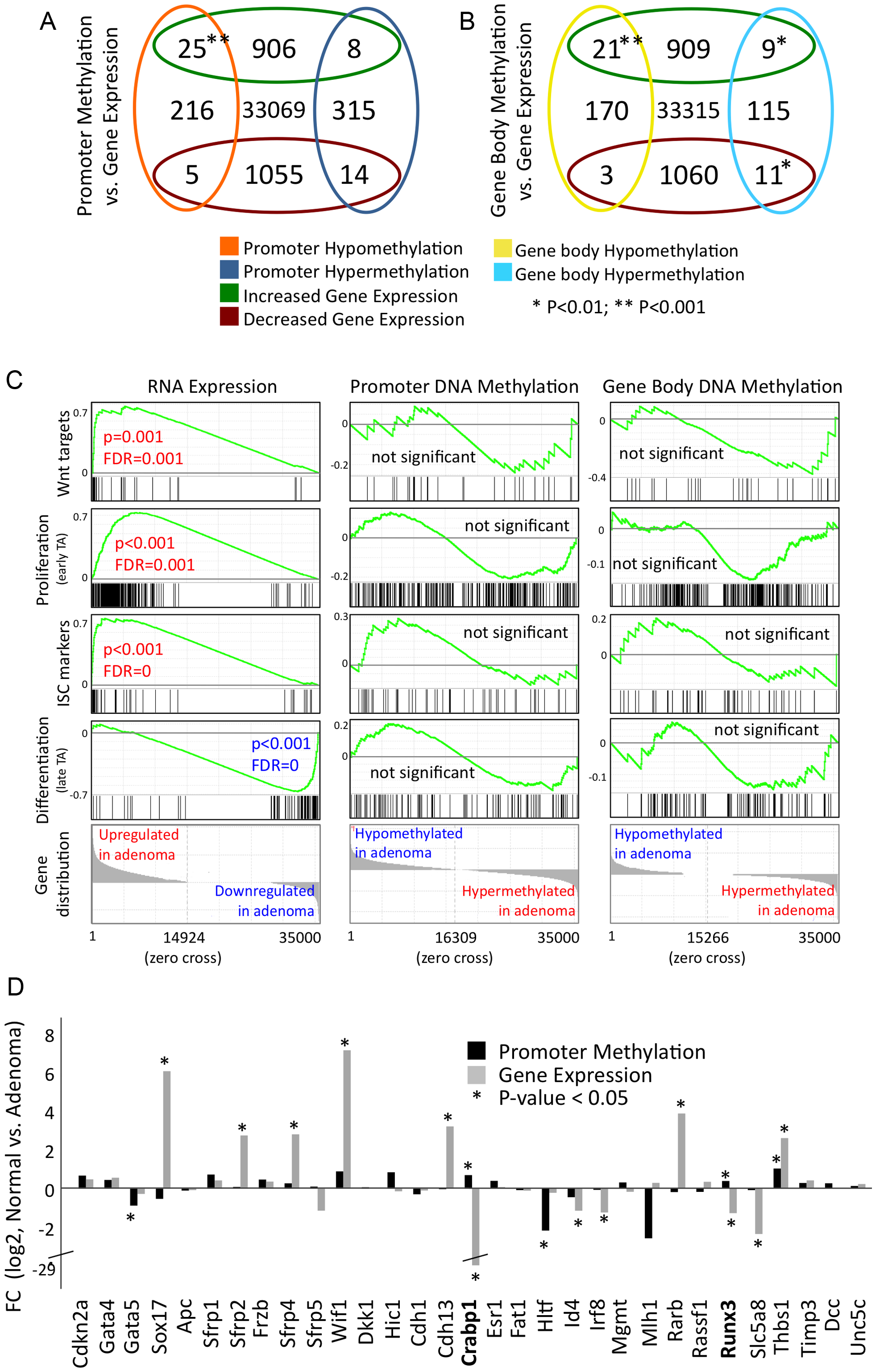 Differential gene methylation and differential gene transcription in adenoma do not correlate extensively.