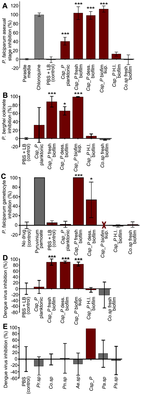 <i>Csp_P</i> has anti-<i>Plasmodium</i> and anti-dengue activity <i>in vitro</i>.