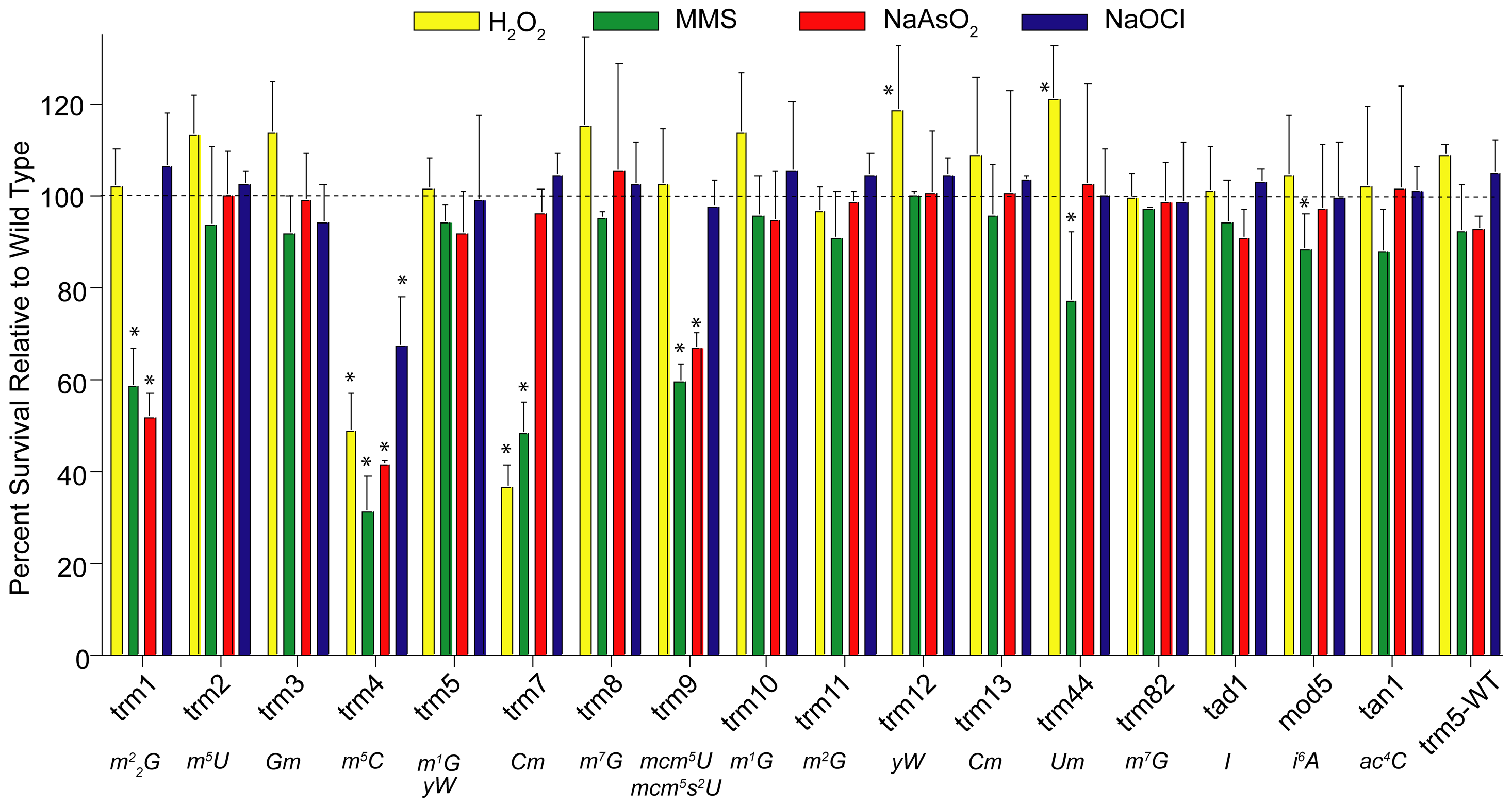 Phenotypic analysis of cytotoxicity induced by MMS, NaOCl, H<sub>2</sub>O<sub>2</sub>, and NaAsO<sub>2</sub> in yeast mutants lacking <i>trm</i> tRNA methyltransferase and other modification genes.