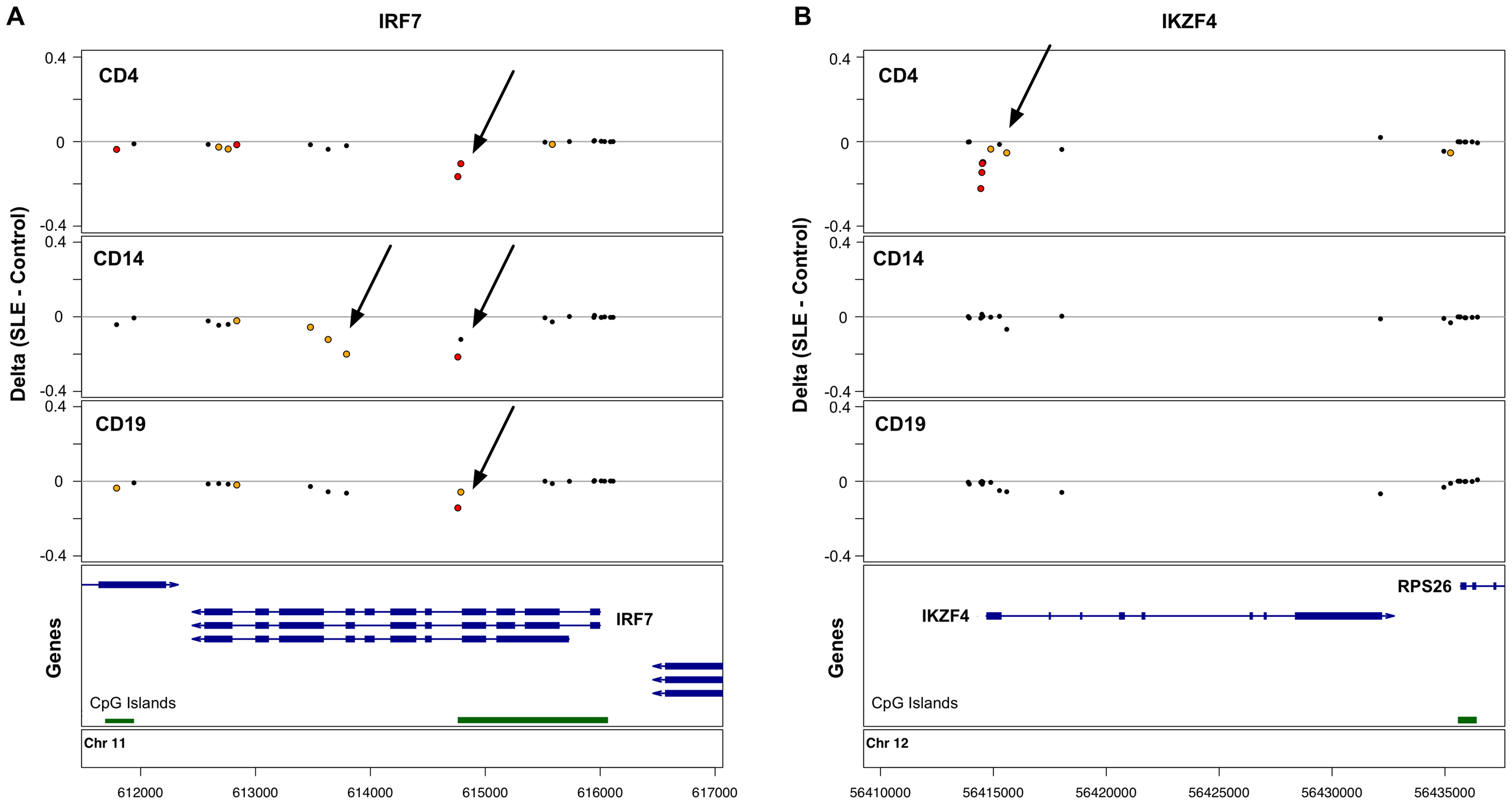 Common and cell type-specific DNA methylation changes in SLE.