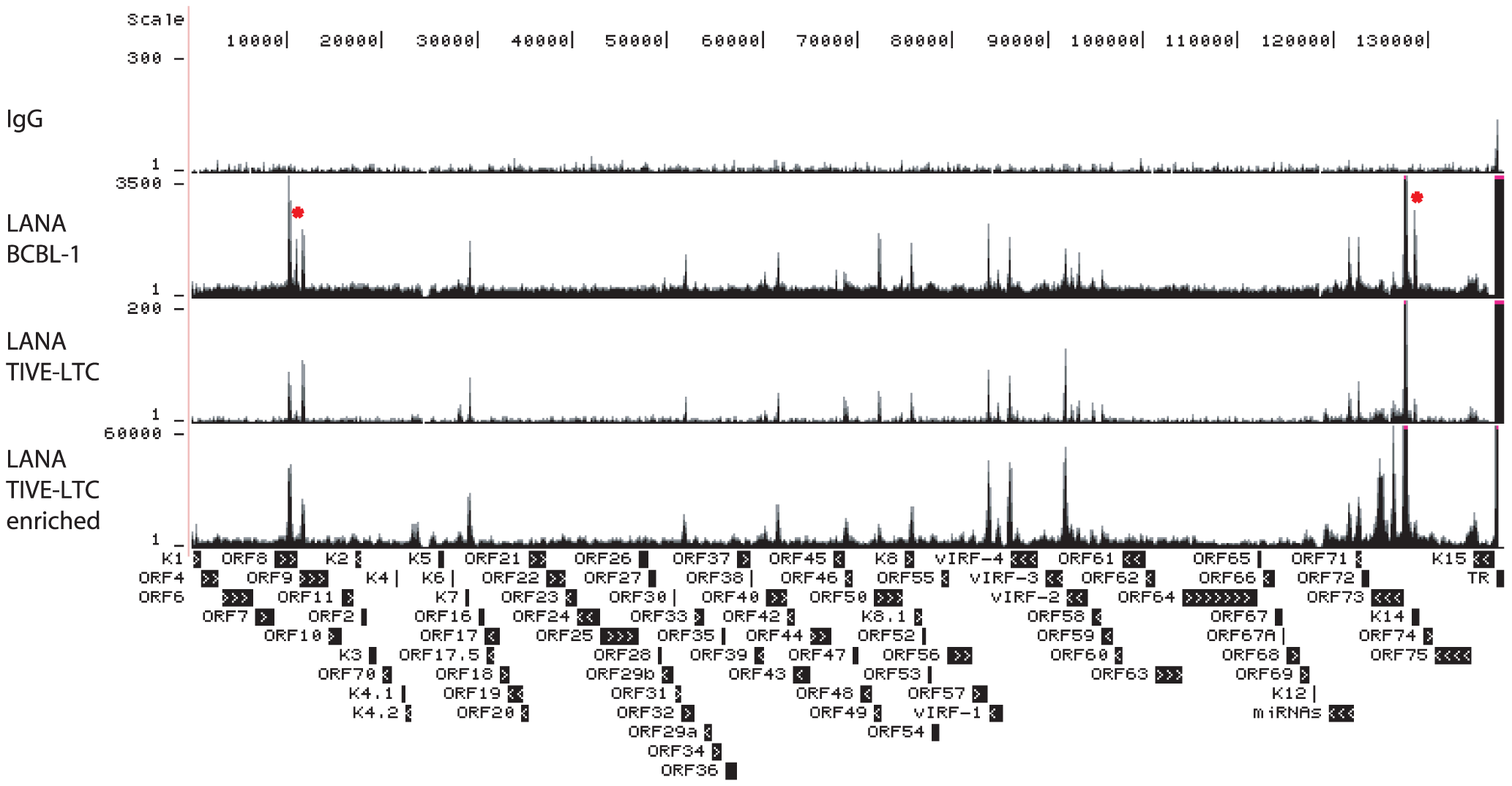 UCSC Genome Browser view of LANA binding on the KSHV genome.