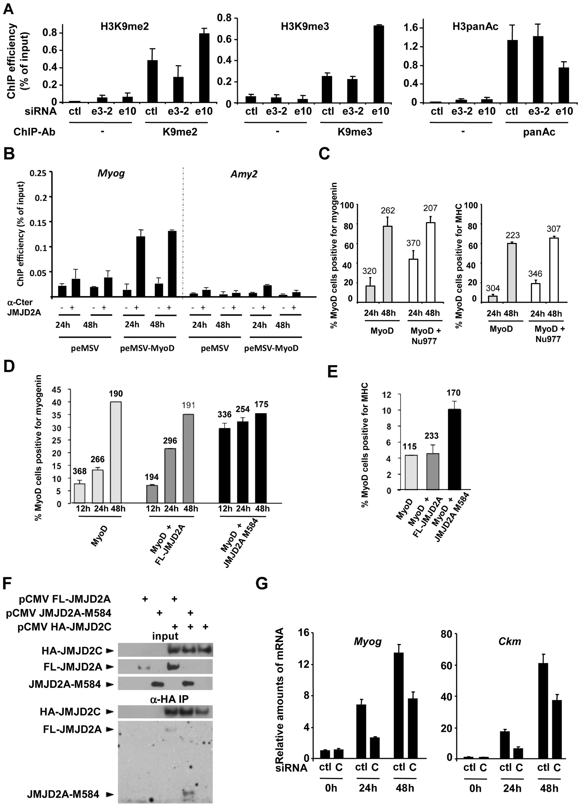 ΔN-JMJD2A enables the removal of a repressive chromatin state.