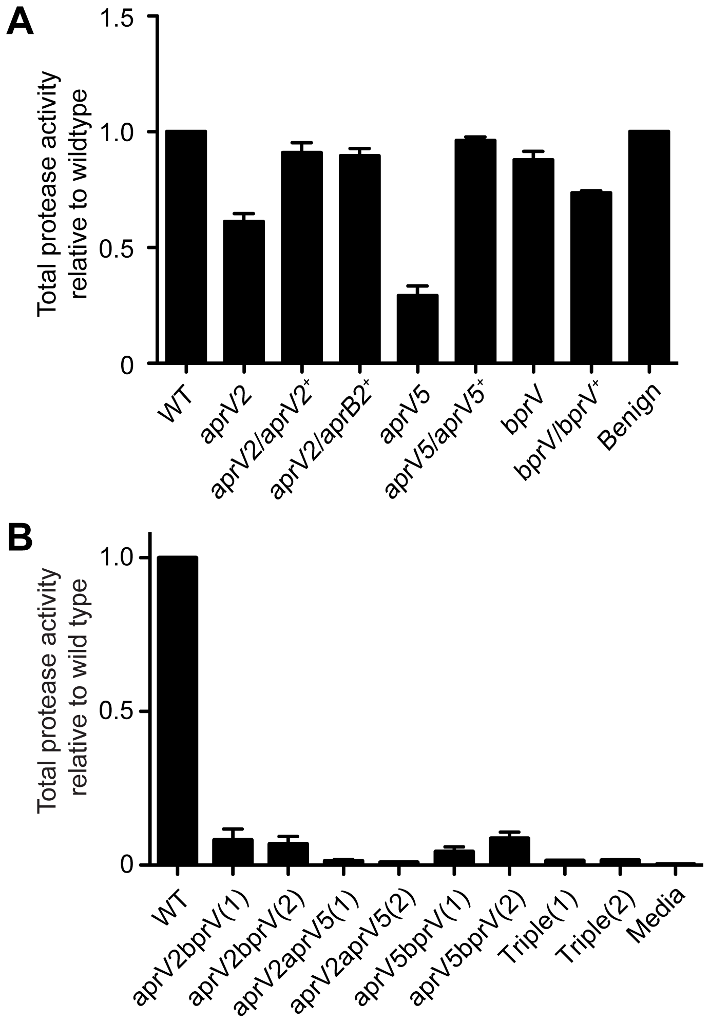 Protease activity of D. nodosus wild-type and protease mutants.