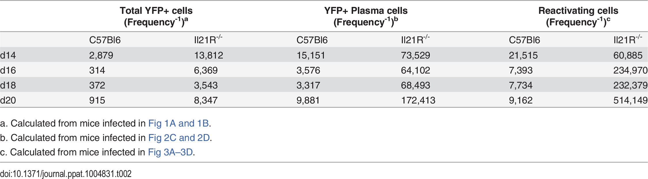 Correlation between infected plasma cells and reactivating cells.