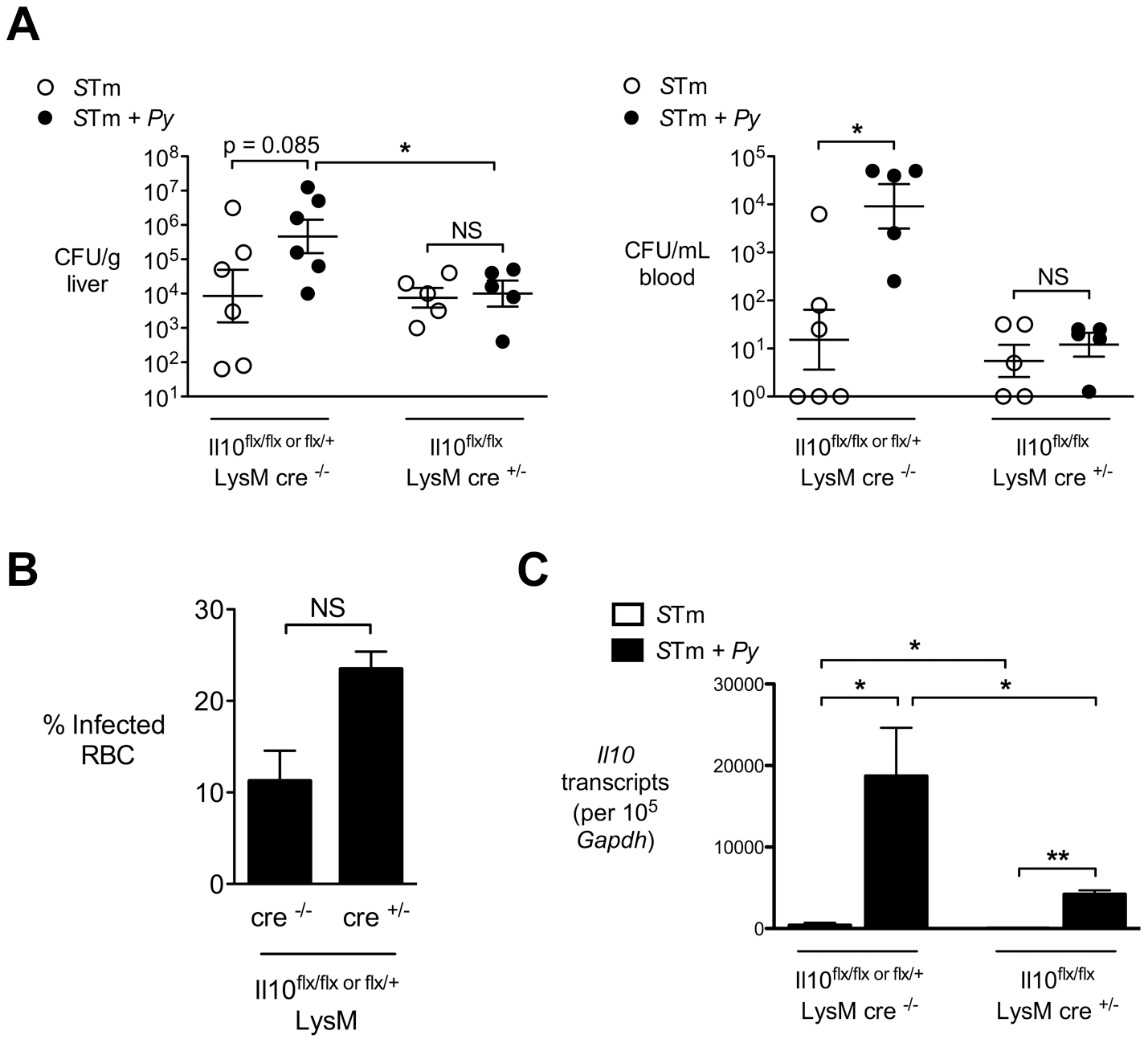 Macrophage/neutrophil derived IL-10 contributes to increased systemic <i>S.</i> Typhimurium burden during concurrent malaria parasite infection.